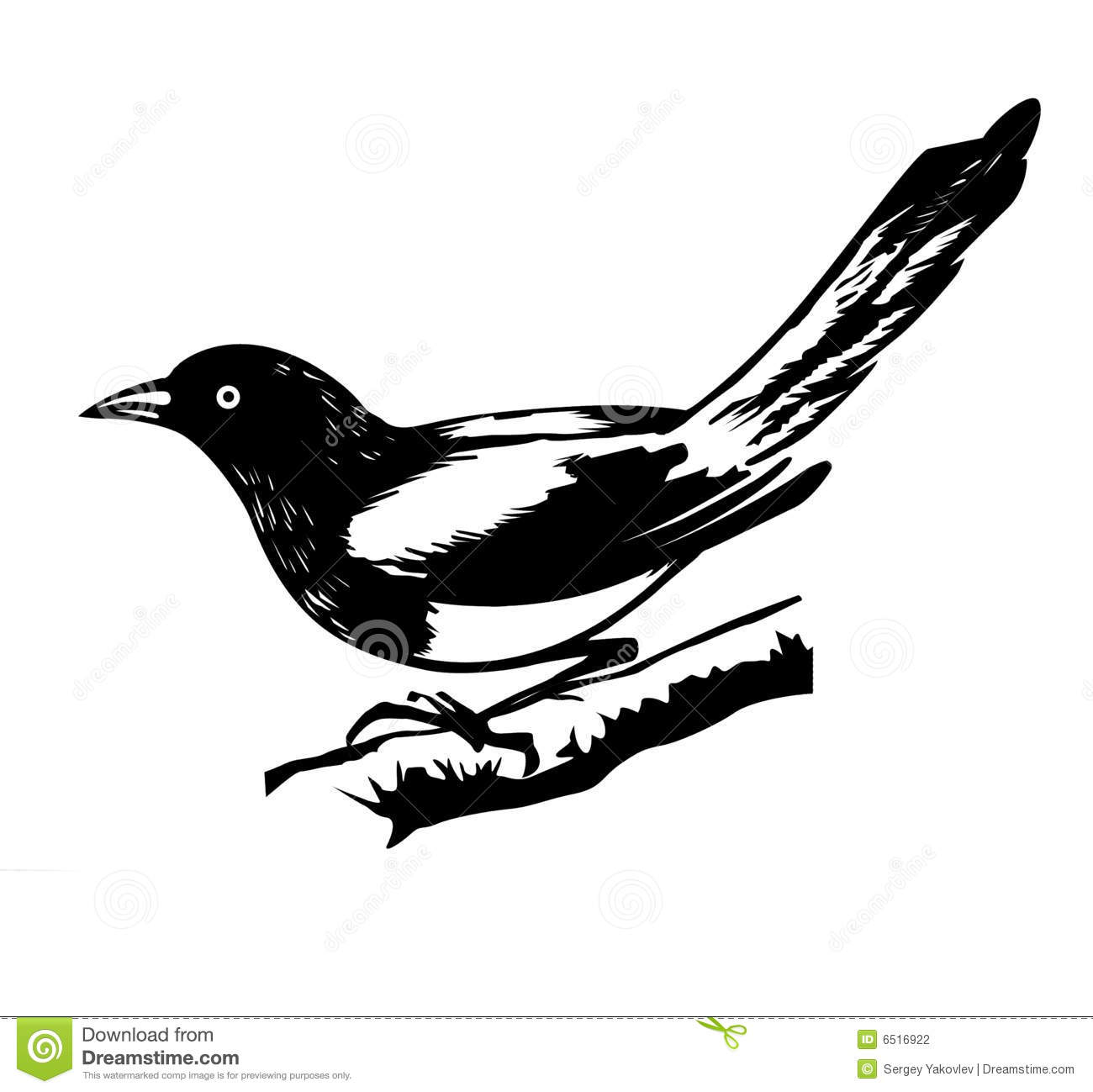 Illustration Magpie Stock Photography Image 6516922