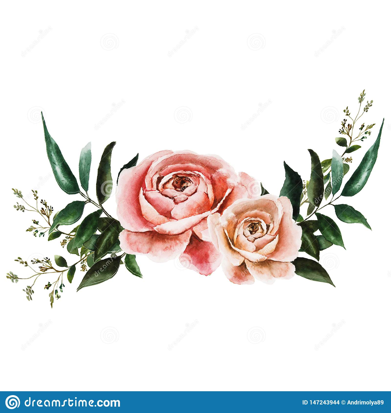 Illustration with roses
