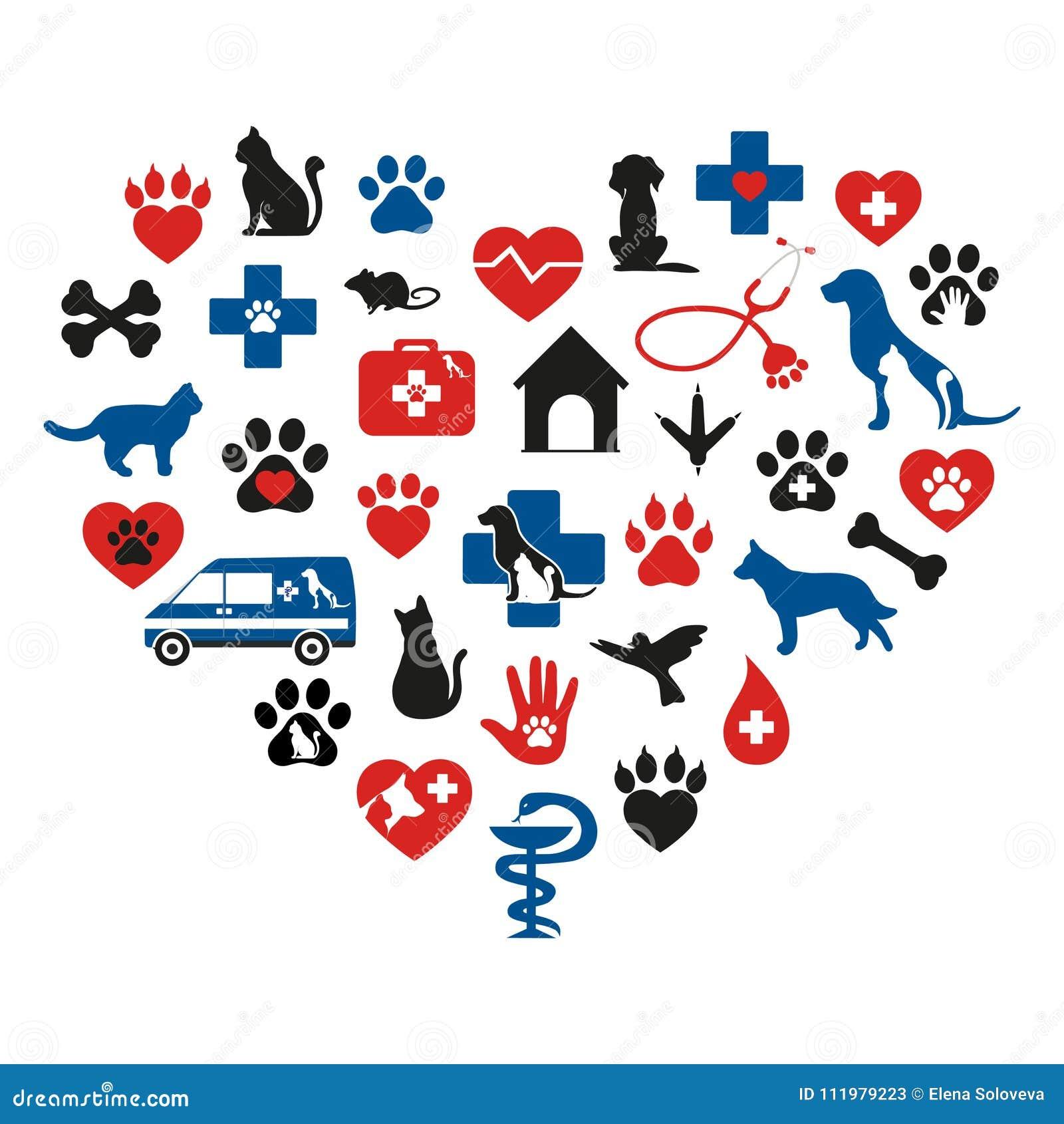 Set Of Veterinary Medicine On White Background Stock Vector