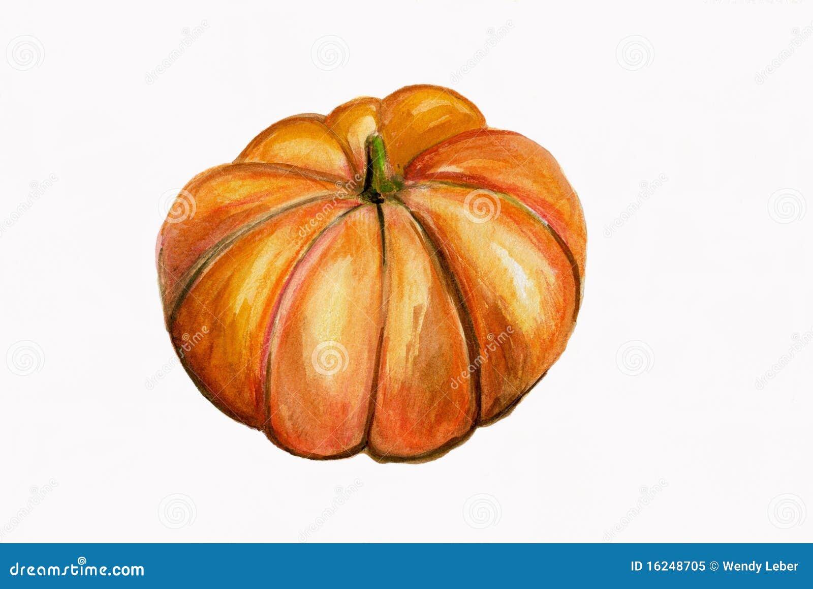 illustration single pumpkin royalty free stock photo