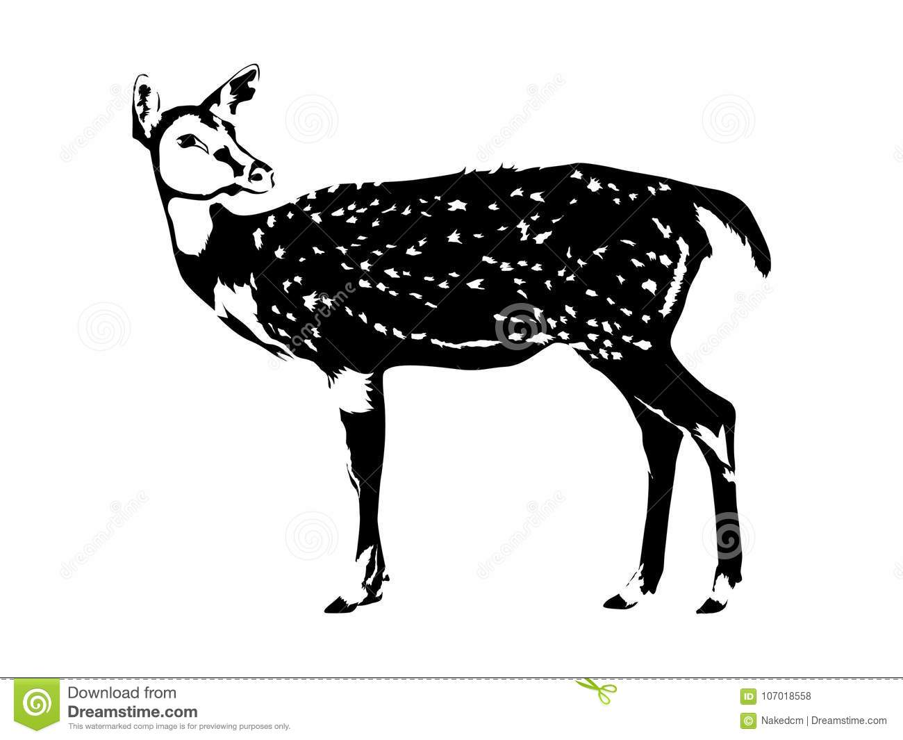 Deer Silhouette In Black And White Stock Vector Illustration of