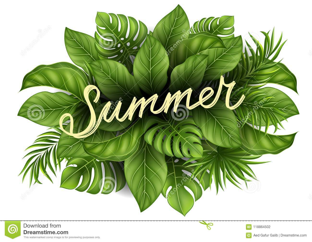 Summer Sale Banner With Tropical Leaves For Promotion Stock Vector