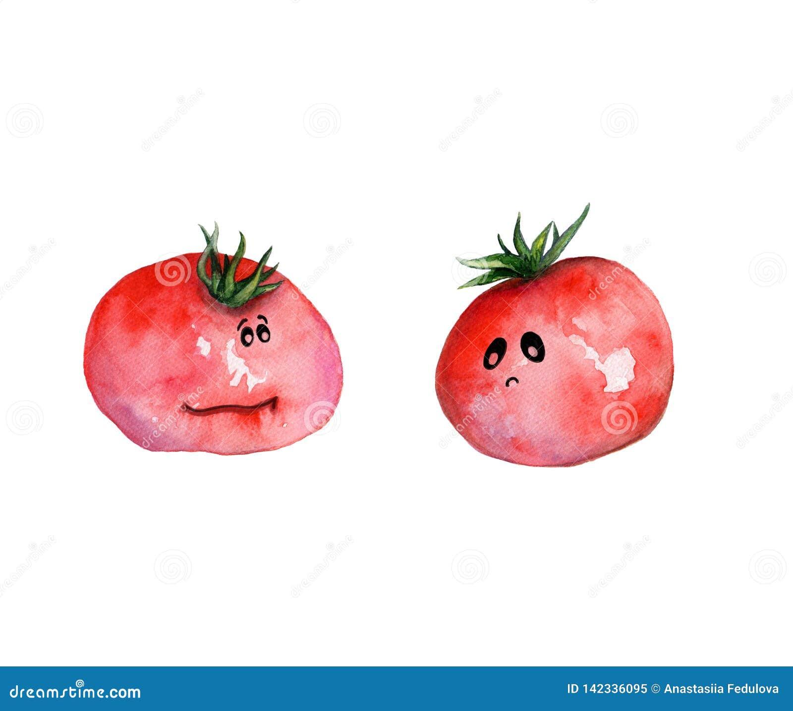 Illustration tirée par la main d aquarelle avec les tomates drôles avec les yeux et le caractère
