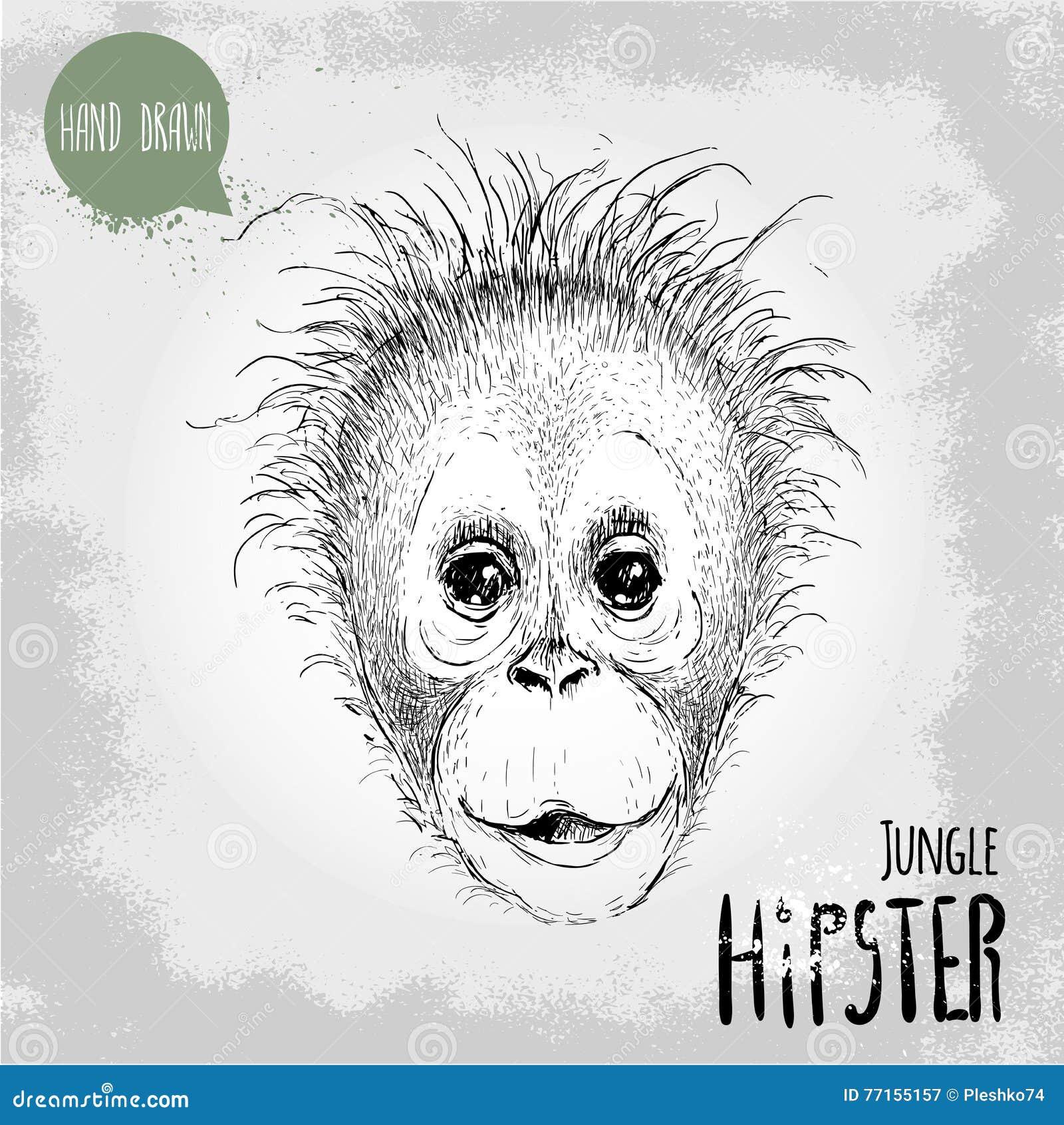 Illustration tirée par la main de style de croquis de visage de singe d enfant d orang-outan