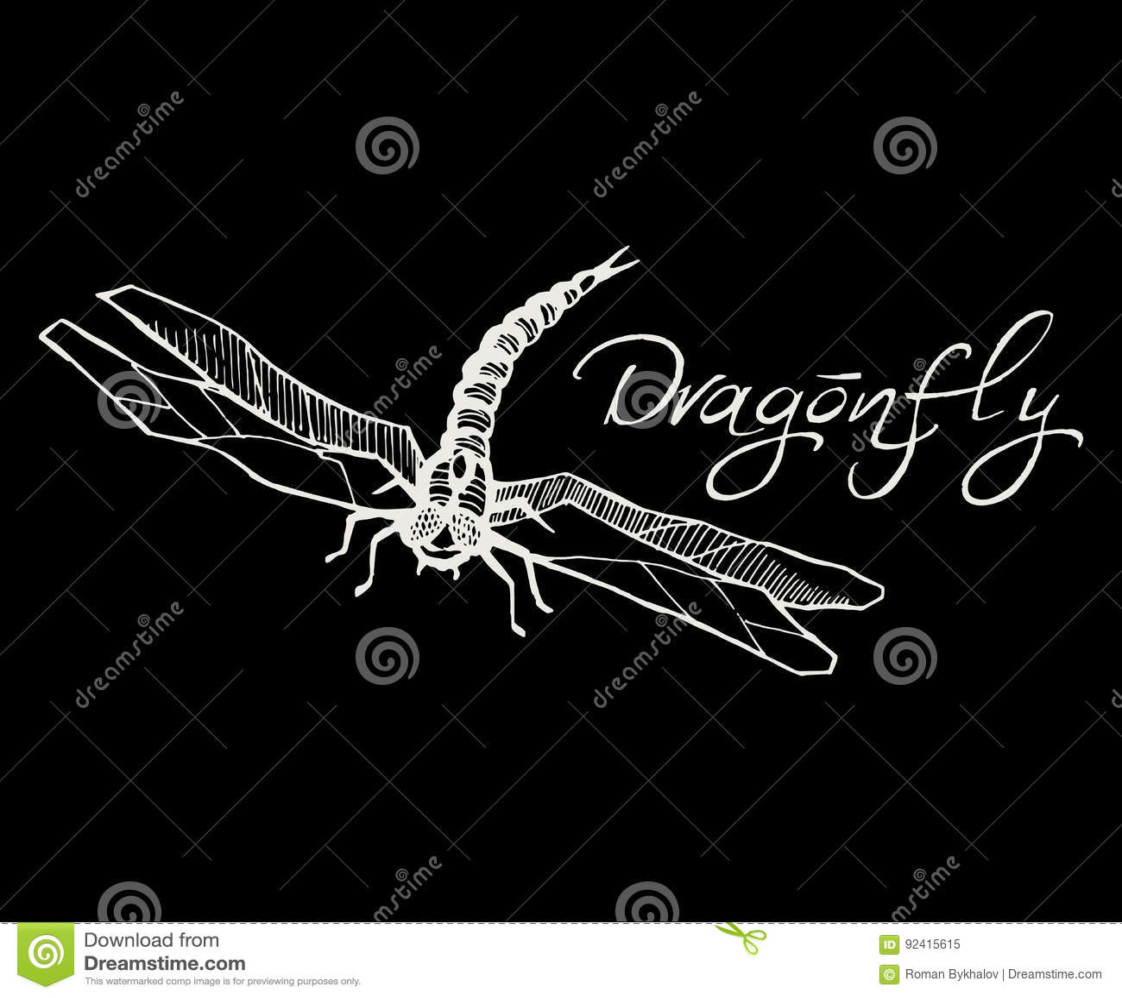 Illustration tirée par la main de vecteur d encre d OIN de style de croquis de libellule