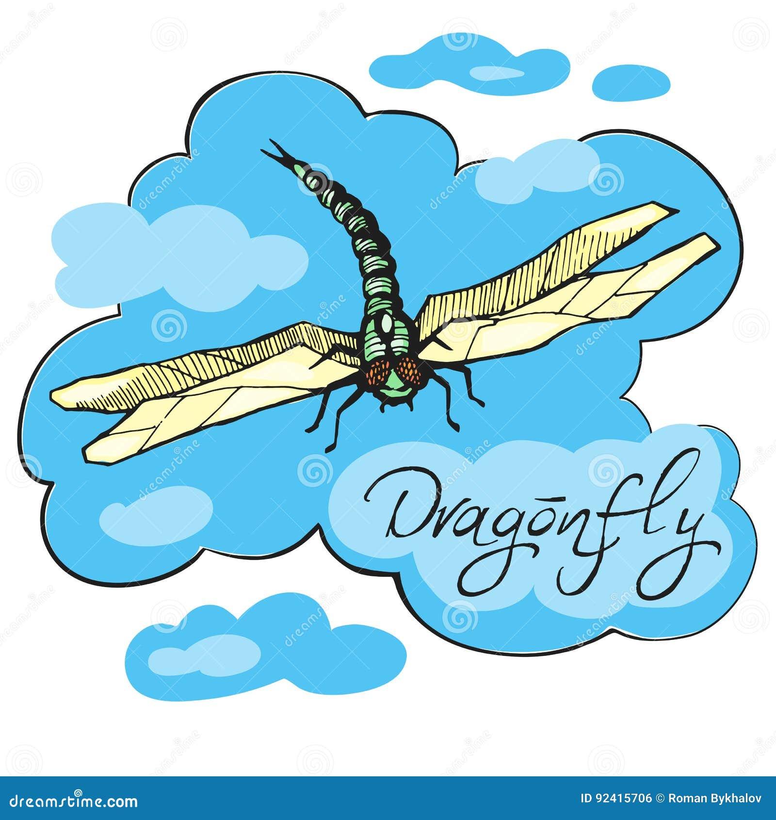 Illustration tirée par la main de vecteur d encre de libellule