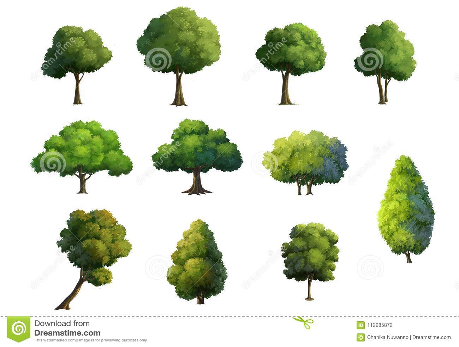 Illustration of trees isolated on white background