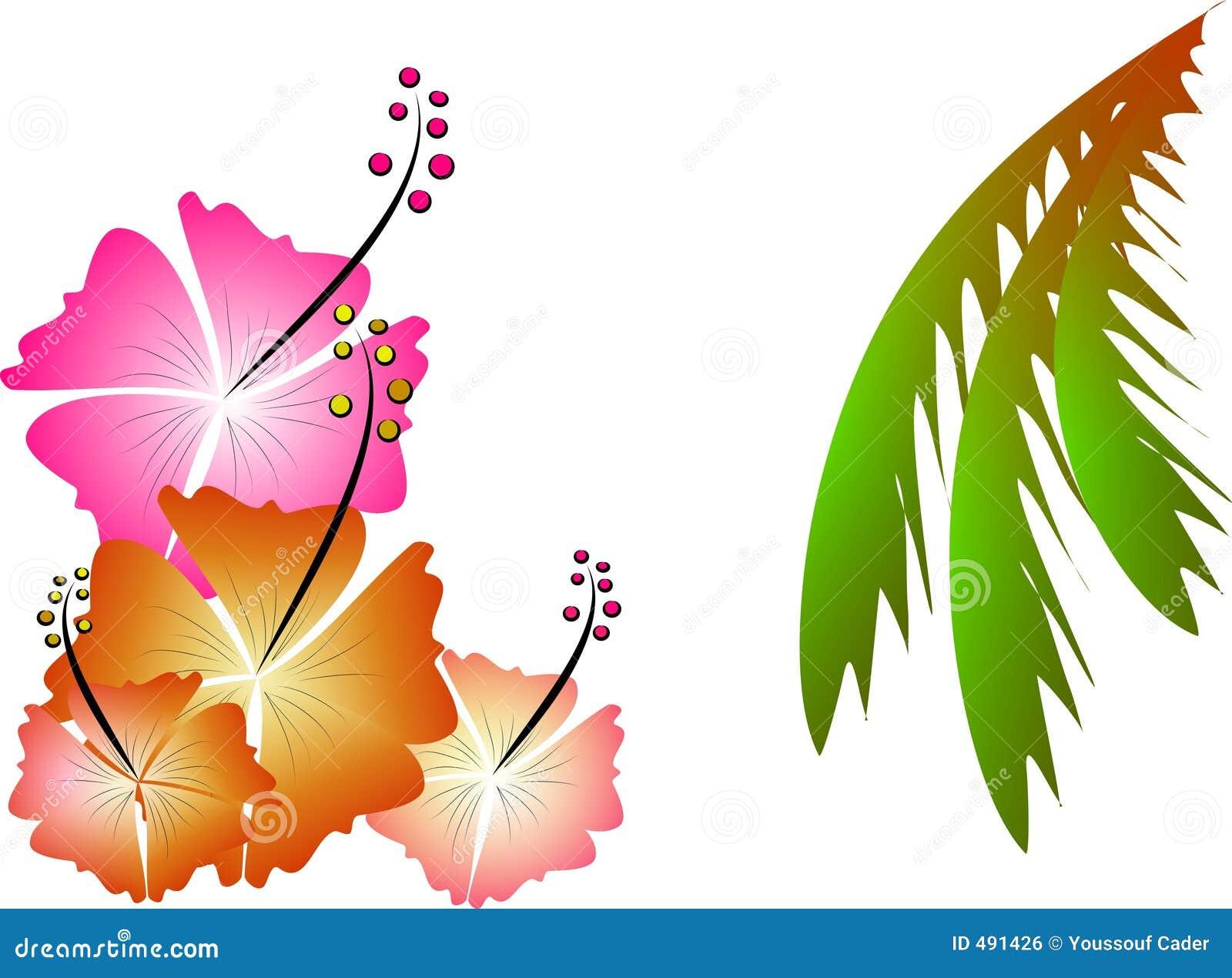 Illustration tropicale