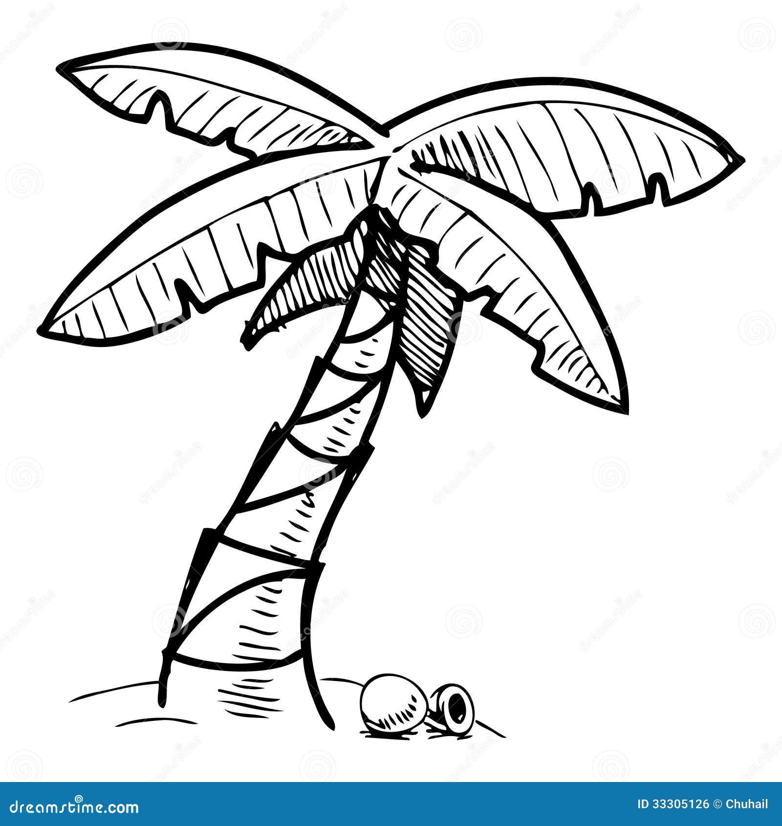 Illustration tropicale de croquis de palmier image libre de droits image 33305126 - Dessin de palmier ...