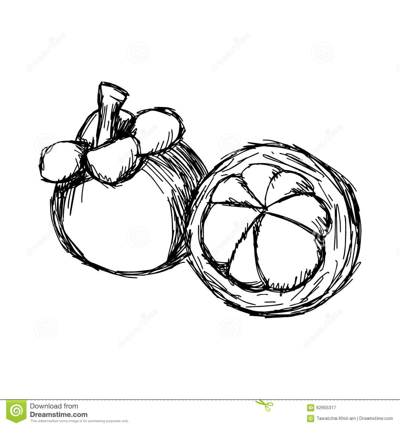 mangosteen coloring pages - photo#13