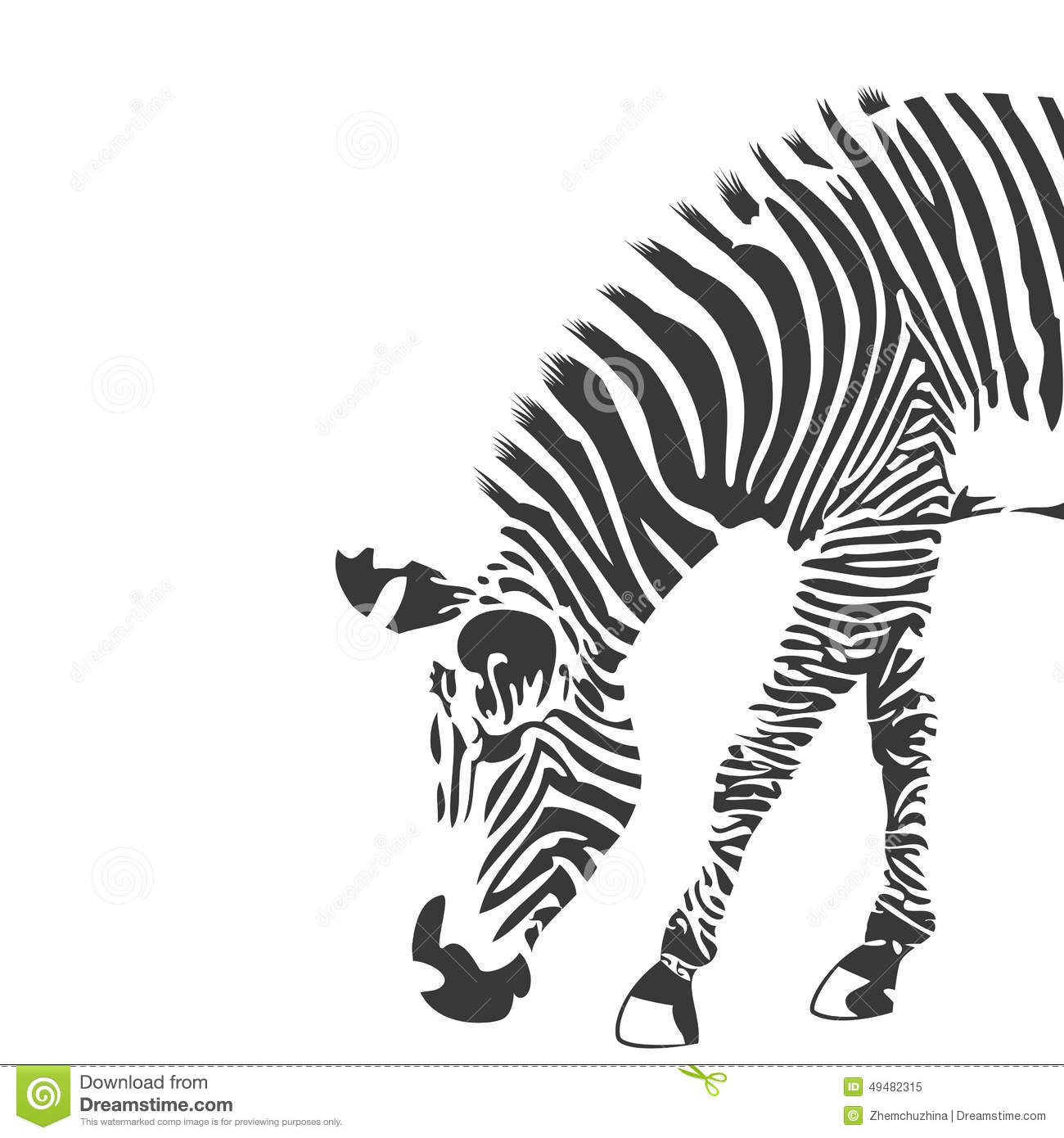 Illustration of zebra in black and white. Background with place for ...