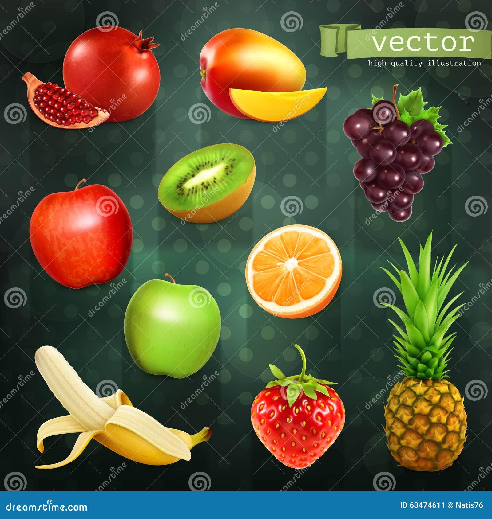 Illustrations de vecteur de fruits illustration de vecteur for Frutas ornamentales