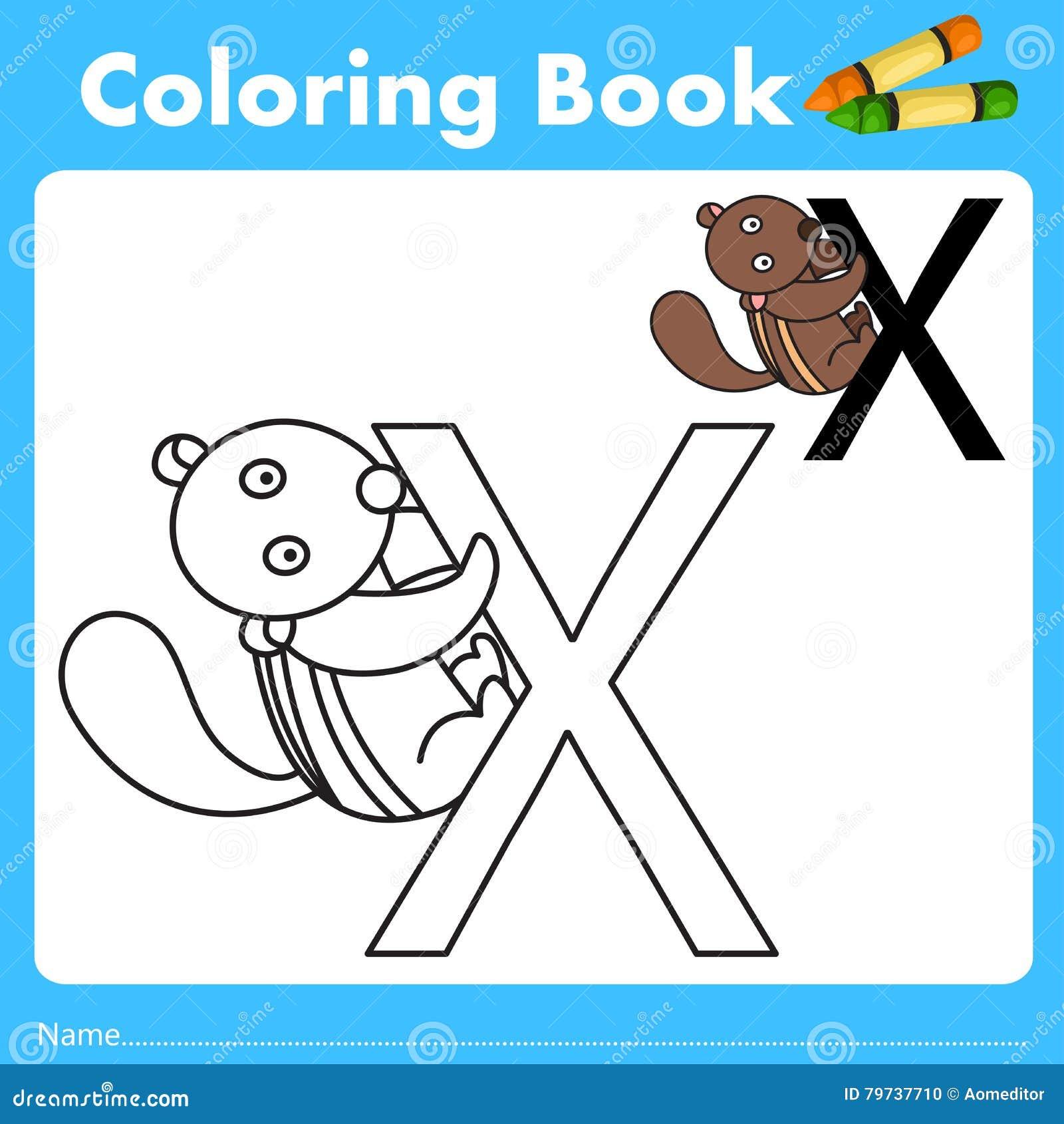 Book color illustrator - Animal Book Color Education Illustrator