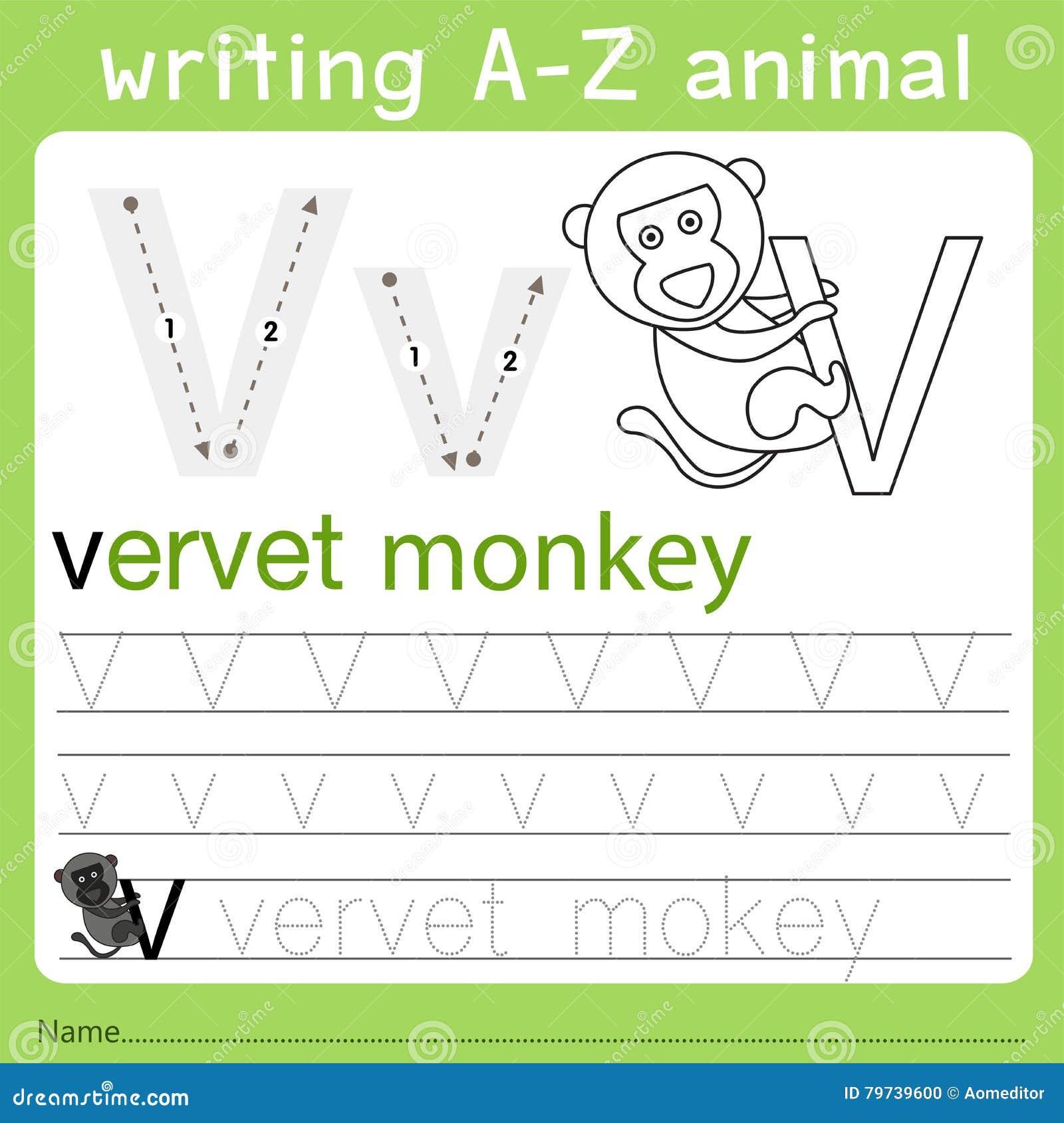 Illustrator del animal del a-z de la escritura v