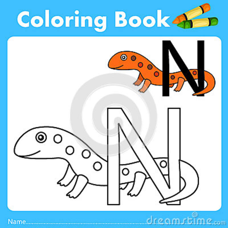 Illustrator del libro del color con el animal del newt