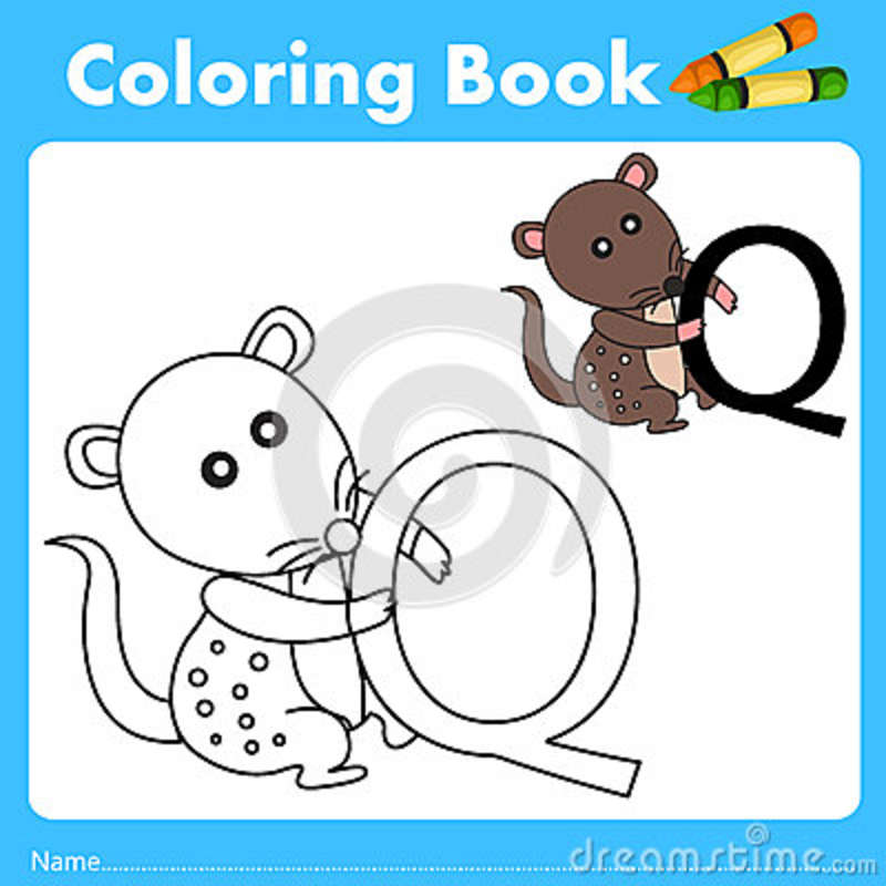 Illustrator del libro del color con el animal del quoll