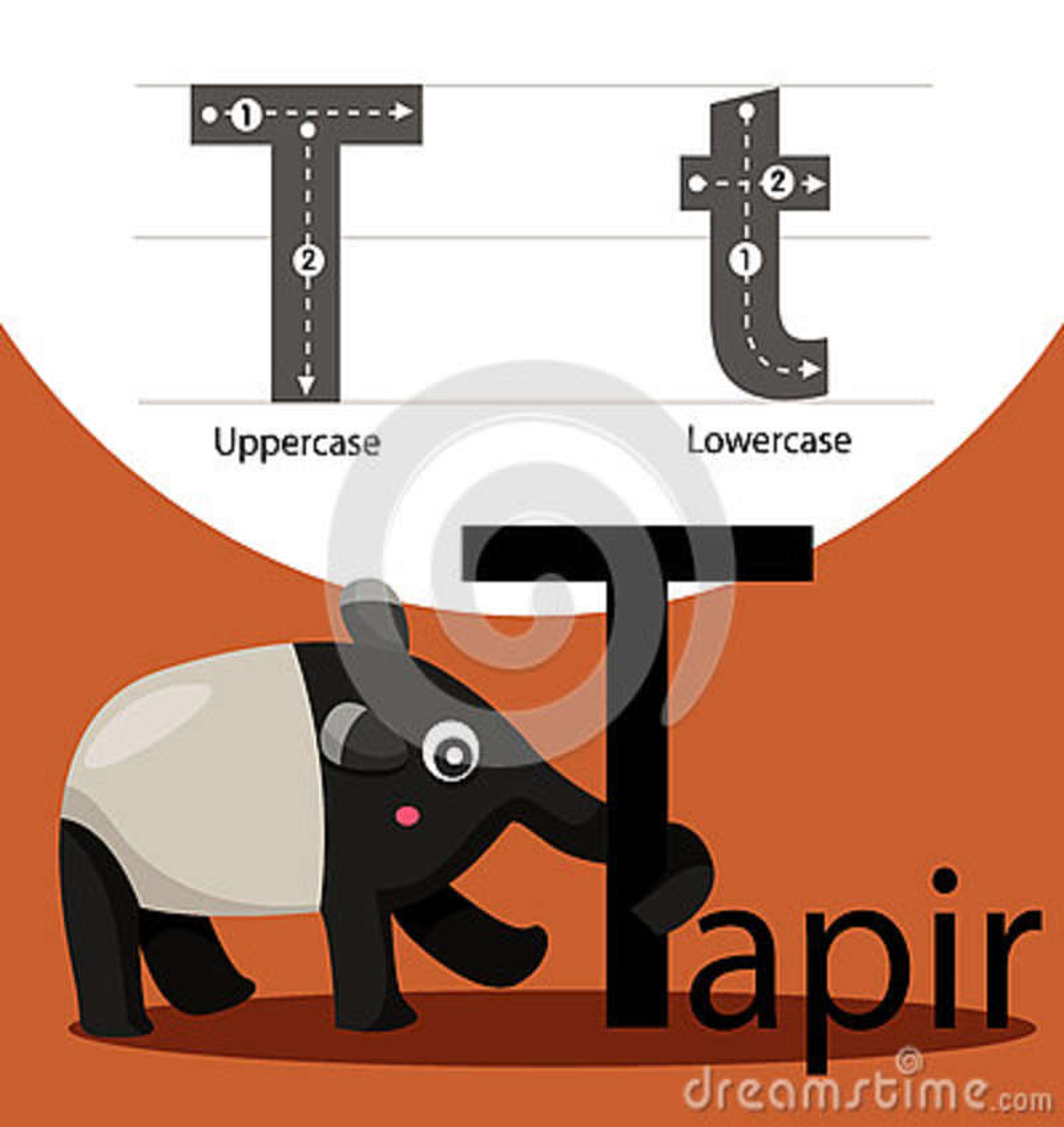 Illustrator del tapir con la fuente de t