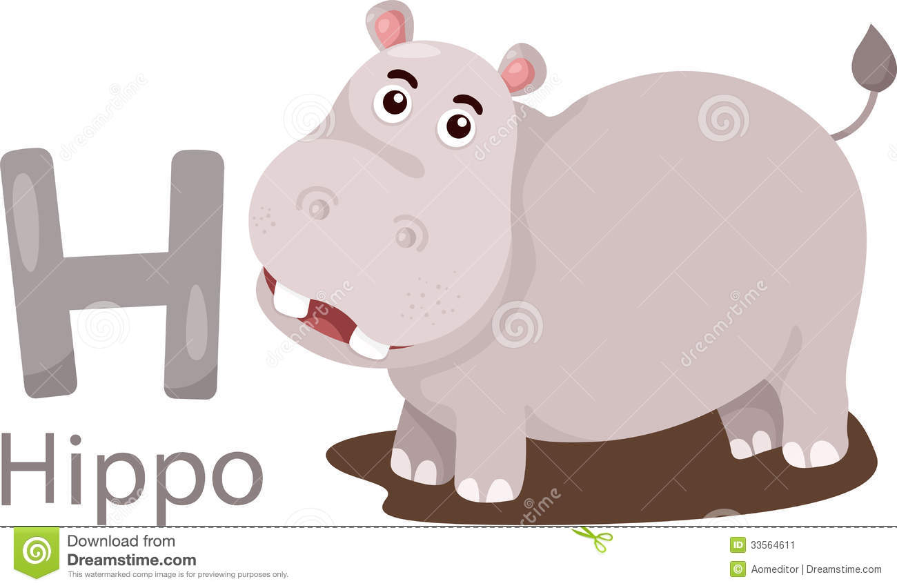 Illustrator Of H With Hippo Stock Image Image 33564611