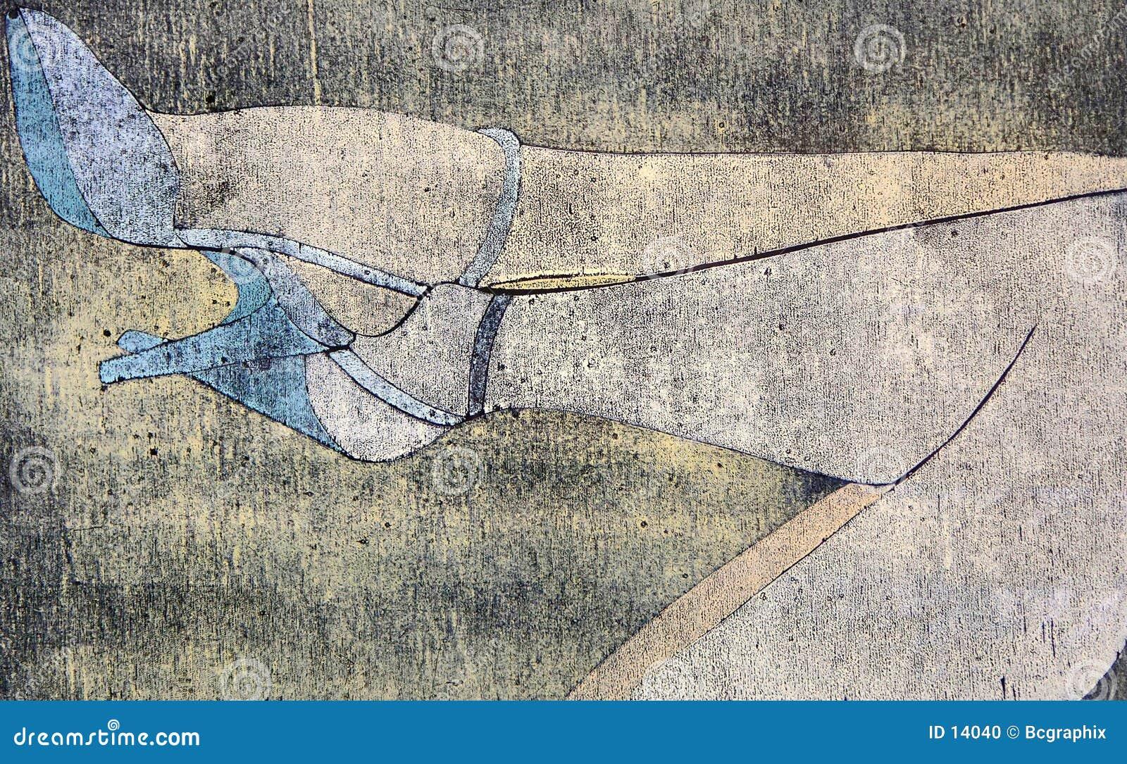 Illustrazione dei piedini della donna
