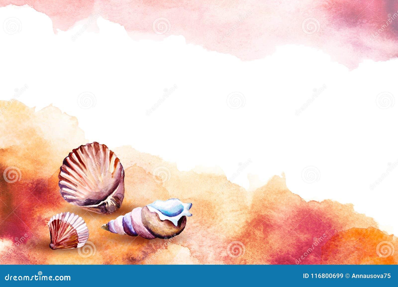 Illustrazione dell acquerello dell conchiglie su una spiaggia