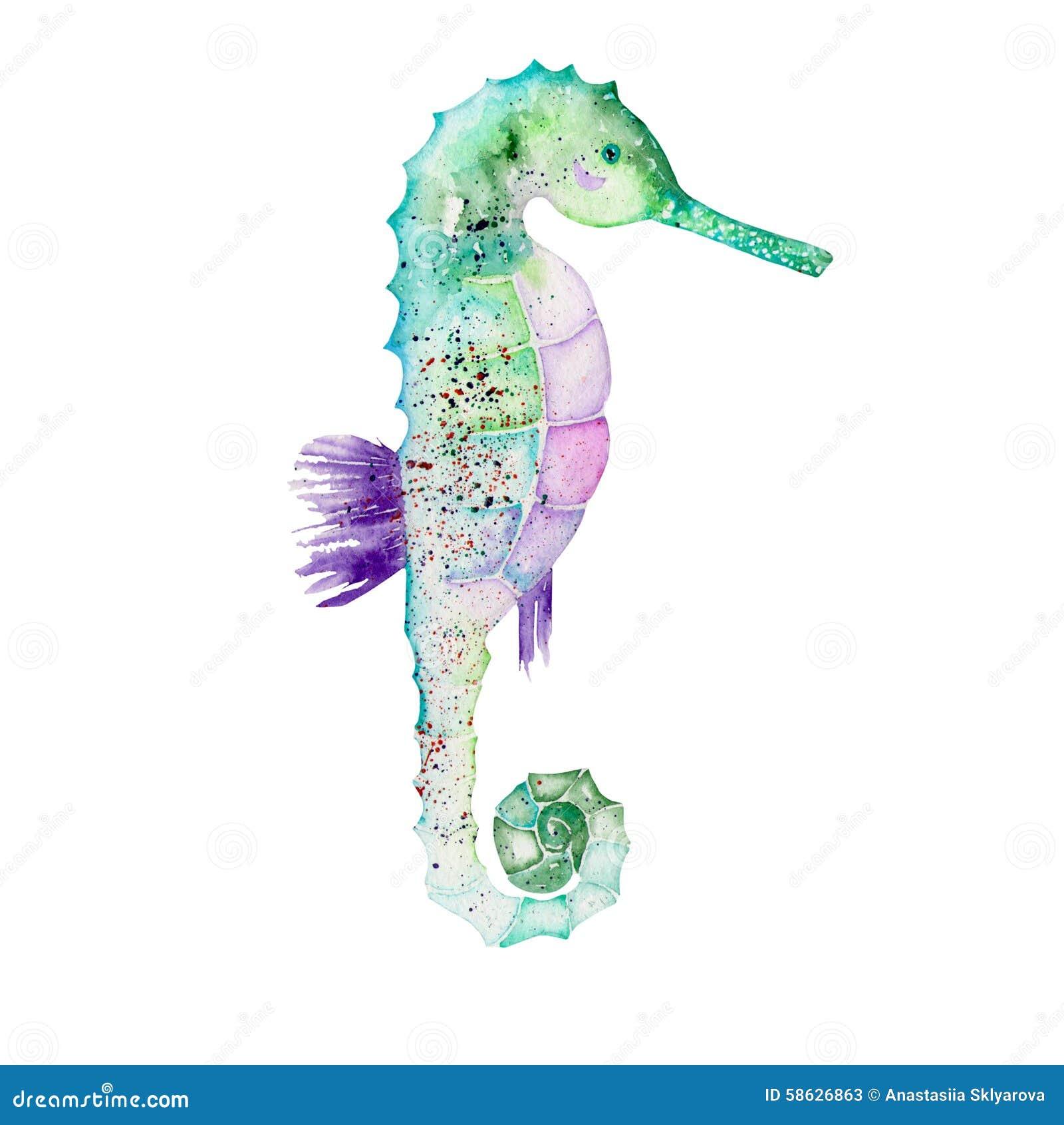 Illustrazione dell acquerello di un ippocampo verde