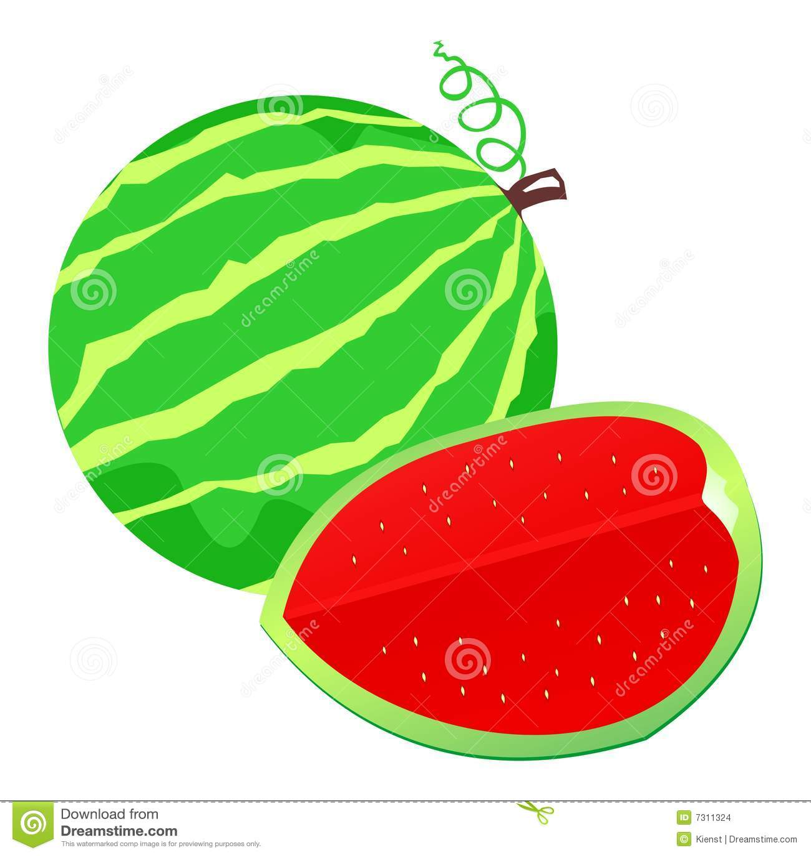 Illustrazione dell anguria