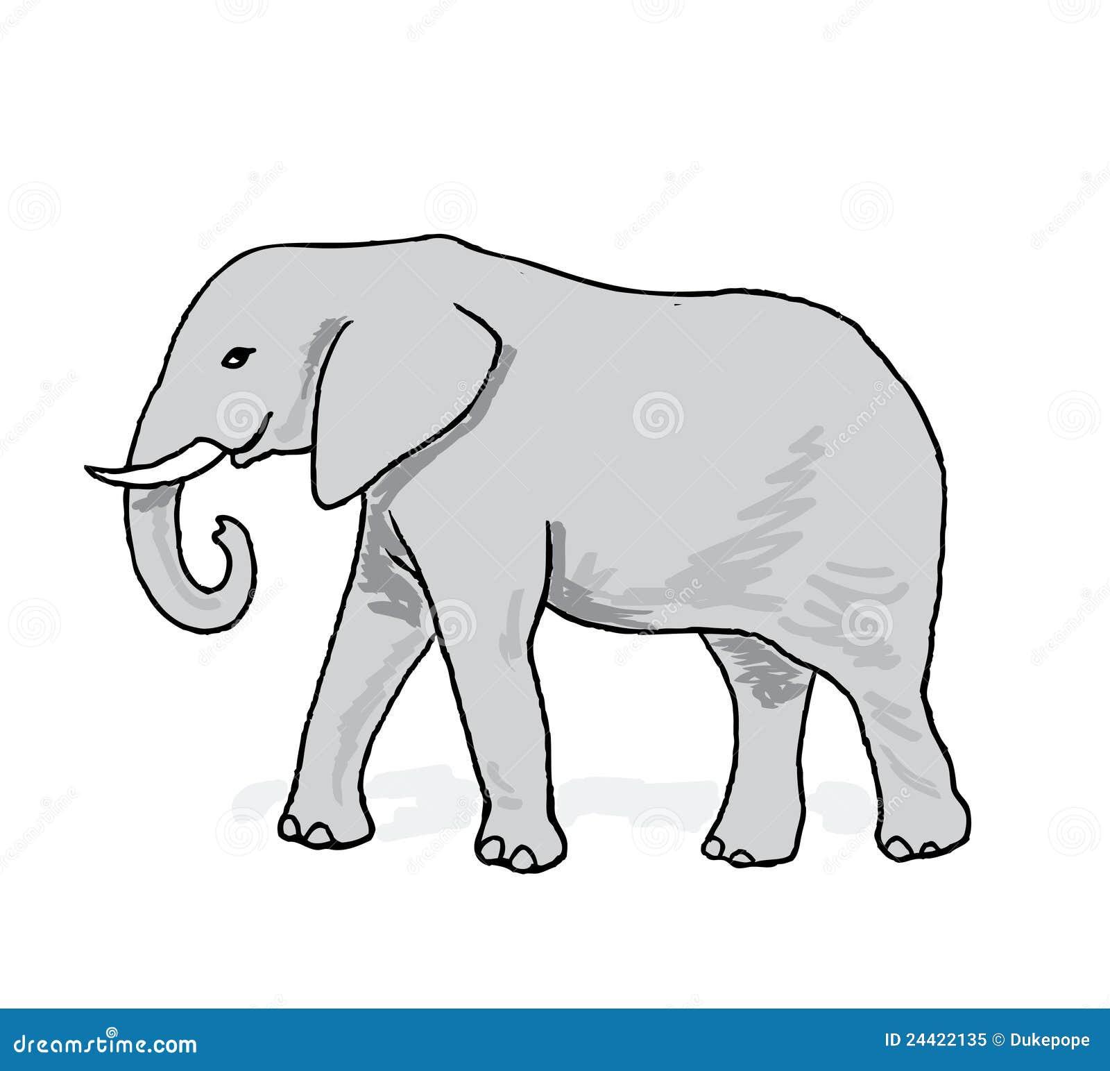 Illustrazione dell elefante