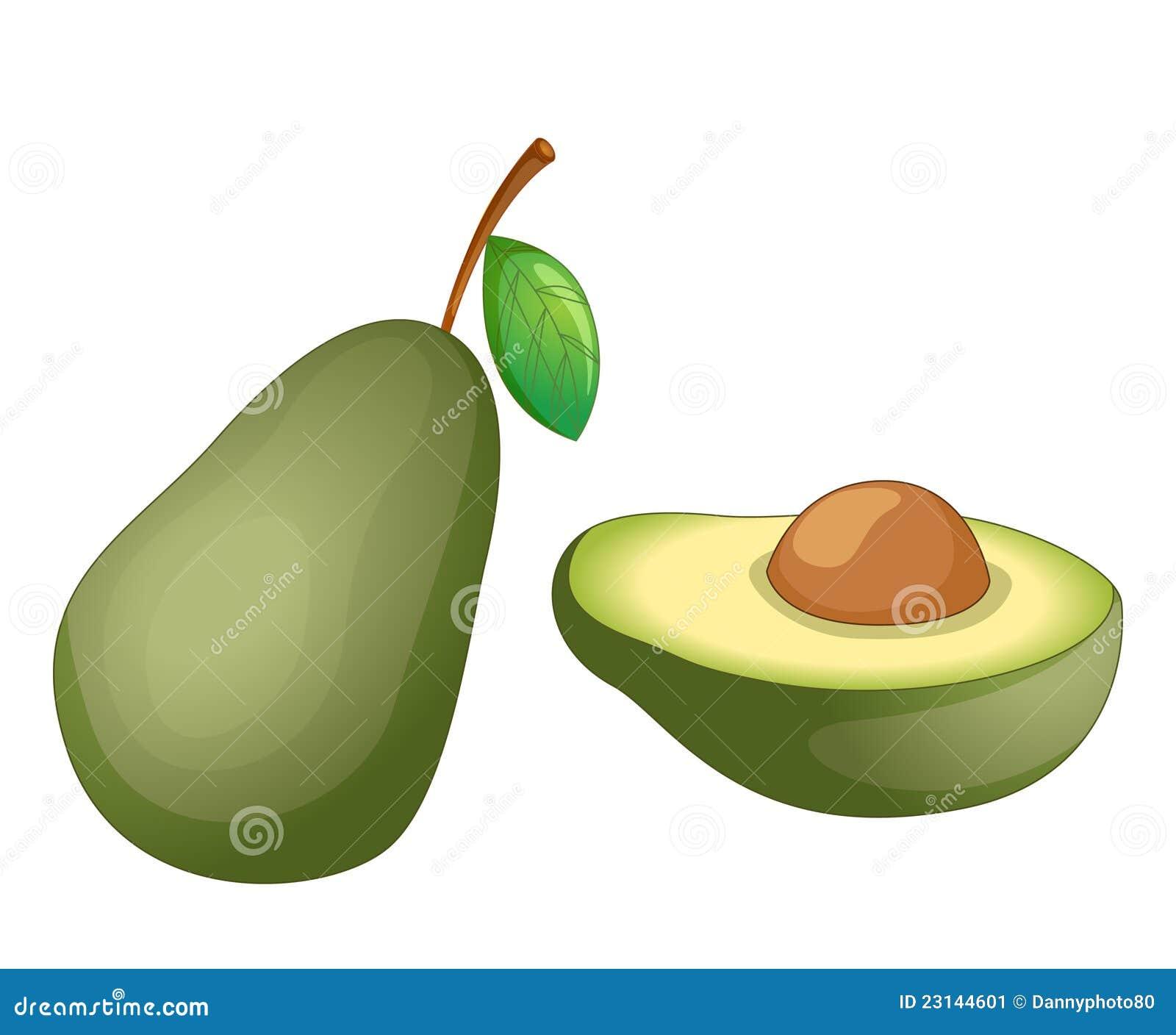Illustrazione della frutta