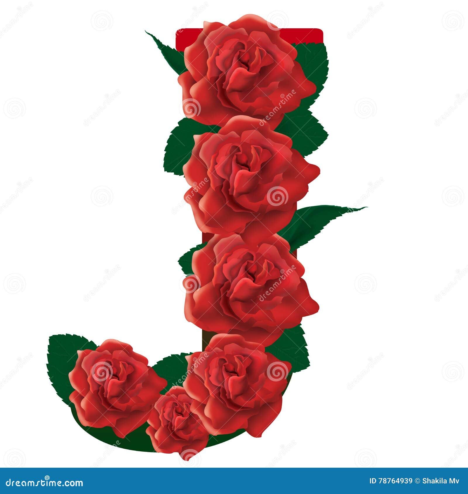 Illustrazione Delle Rose Rosse Della Lettera J Immagine Stock