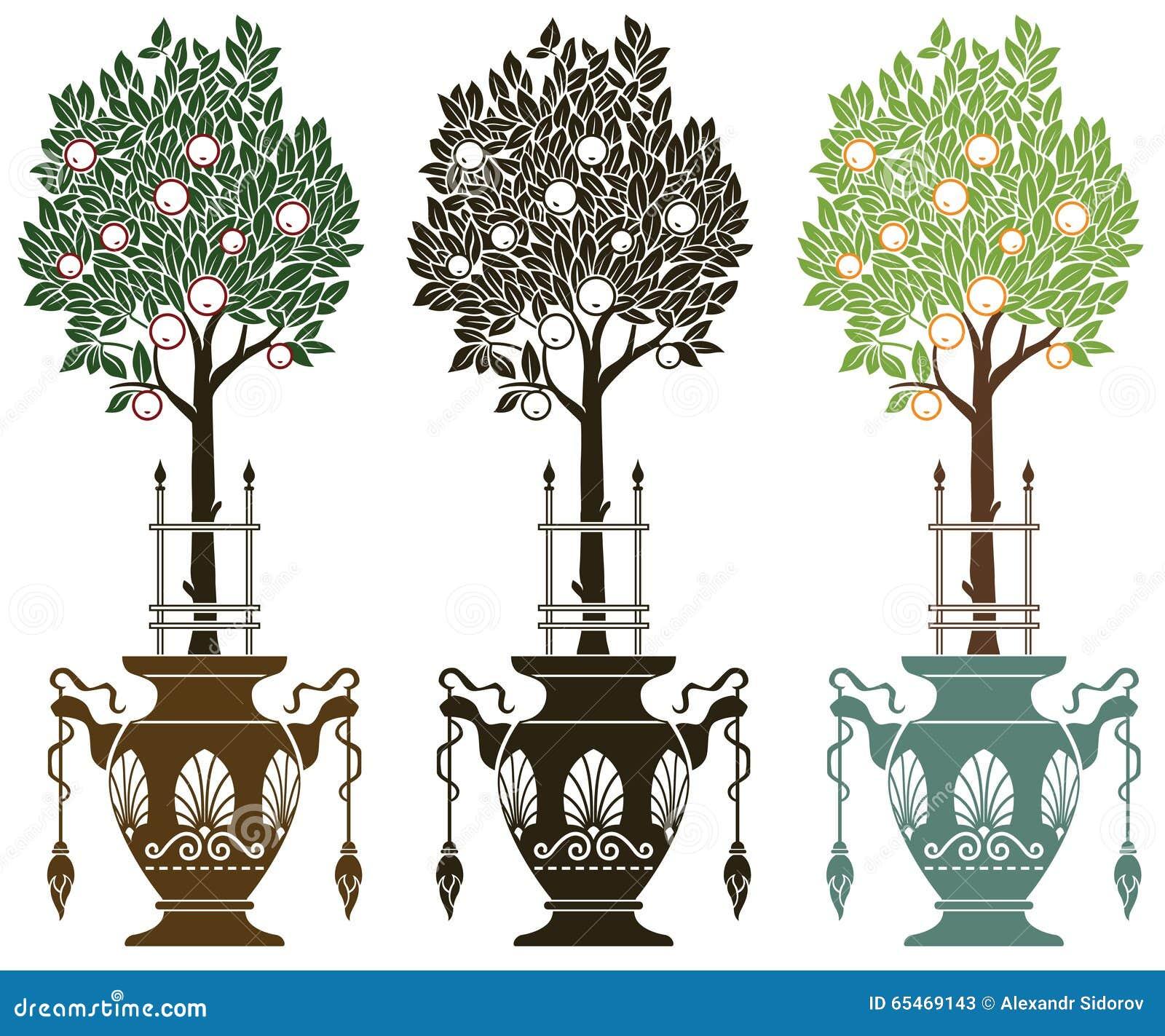 Illustrazione di riserva vaso con gli alberi da frutto for Alberi da frutto prezzi