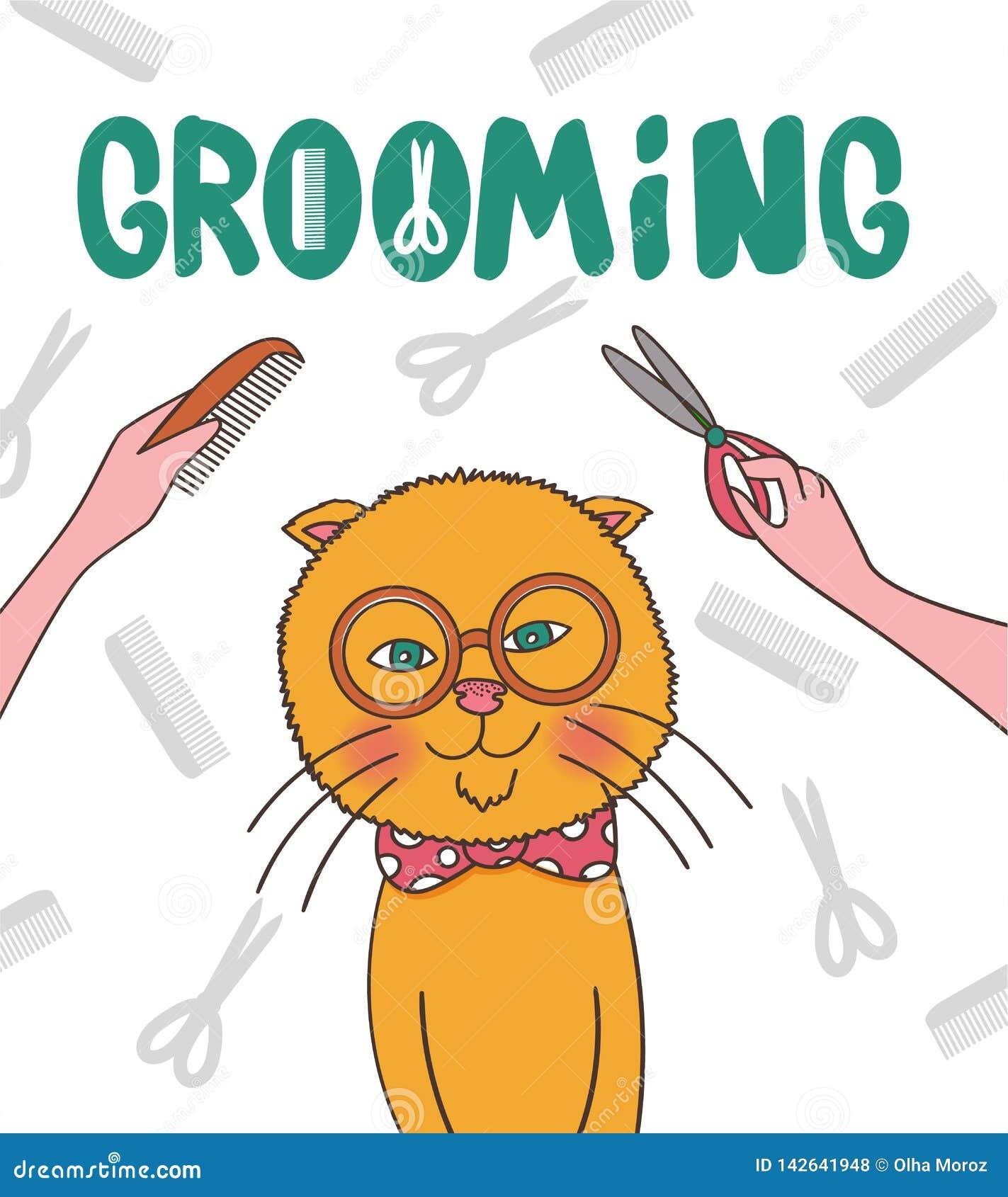 Illustrazione di vettore Animali domestici governare Taglio di capelli del gatto