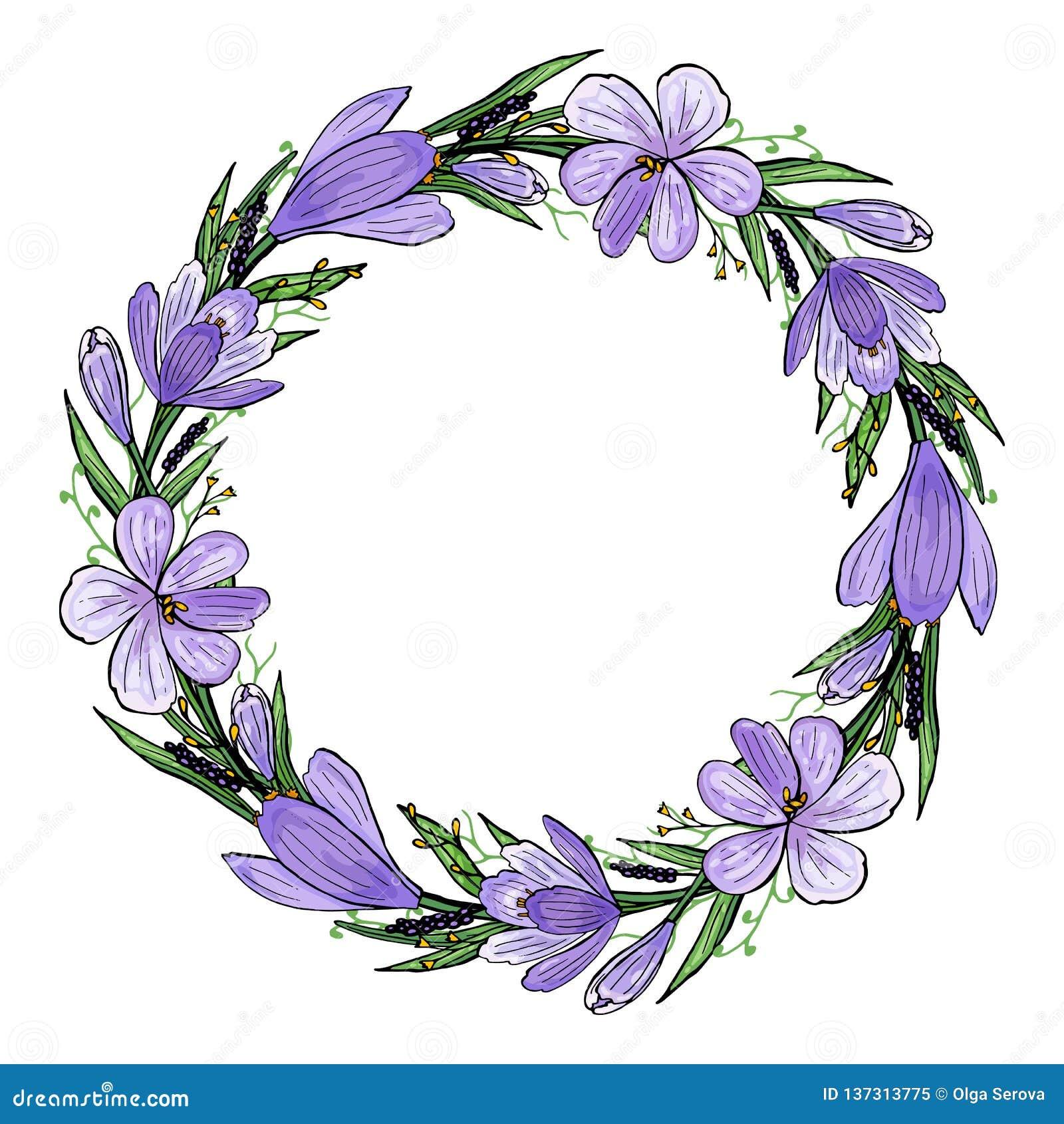 Illustrazione di vettore della corona del croco con il giacinto e le erbe Struttura disegnata a mano della molla dei fiori viola
