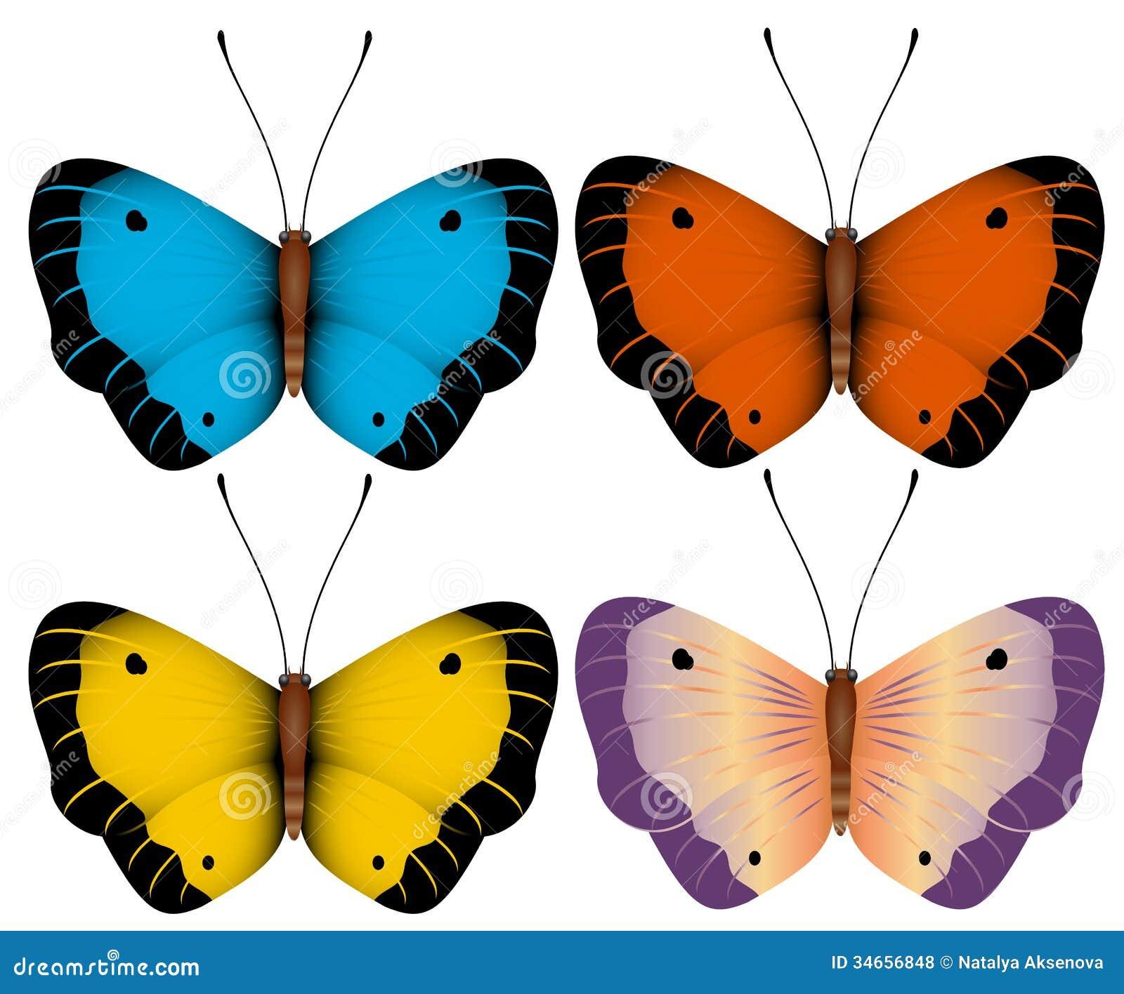 Illustrazione di vettore di farfalle colorate multi for Foto farfalle colorate