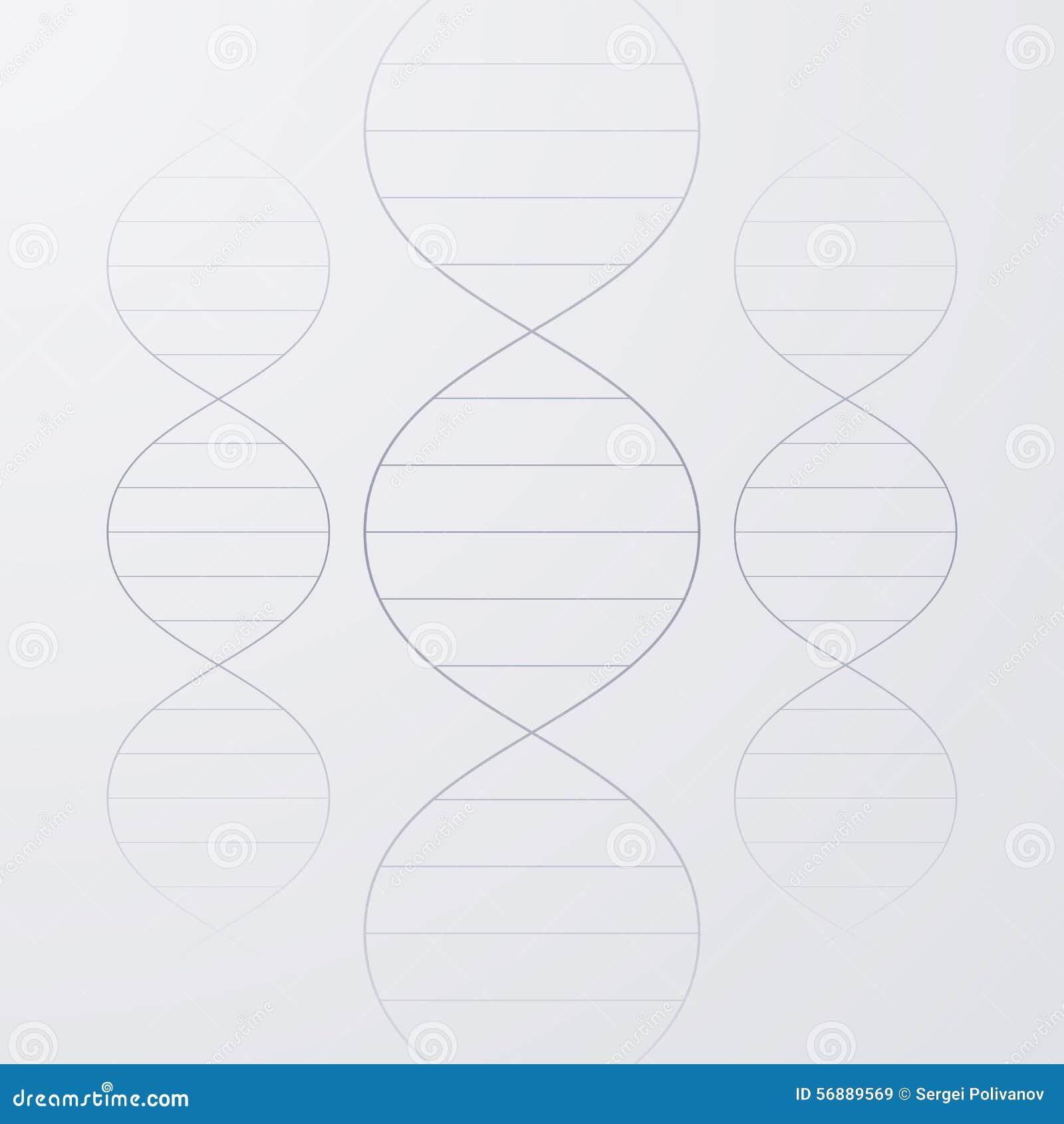 Illustrazione di vettore di una molecola del DNA