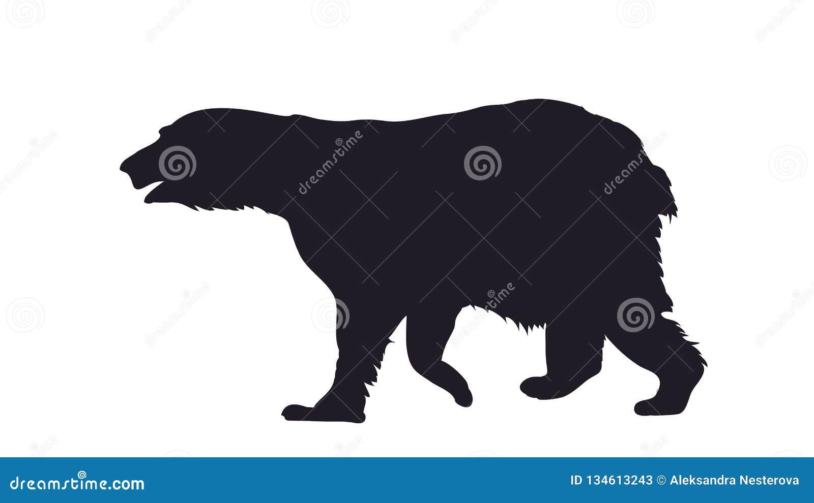 Illustrazione di vettore di un orso che sta, disegnante siluetta