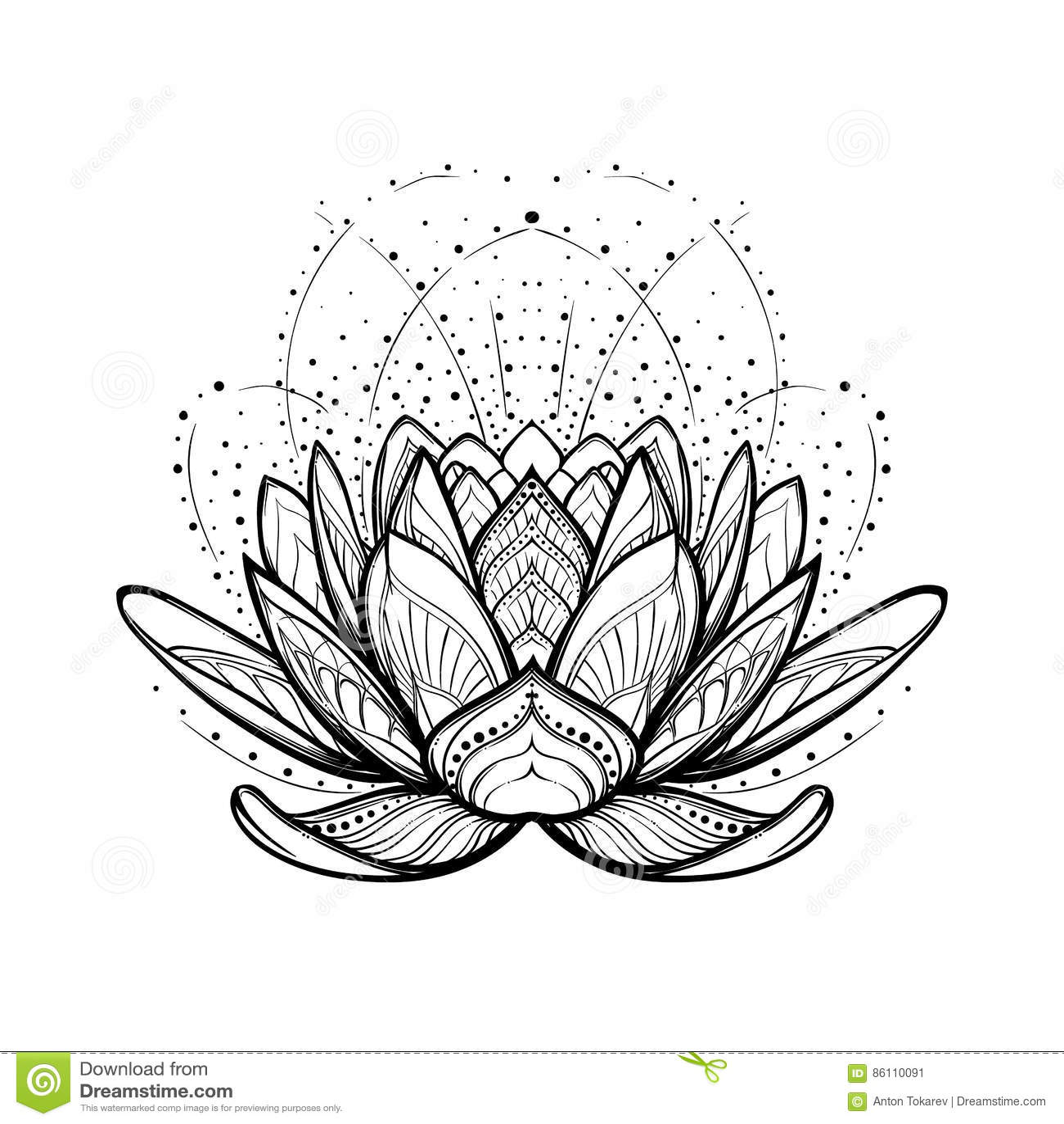Fiore Di Loto Tattoo Disegno.Illustrazione Di Zen Del Fiore Di Loto Disegno Lineare Stilizzato