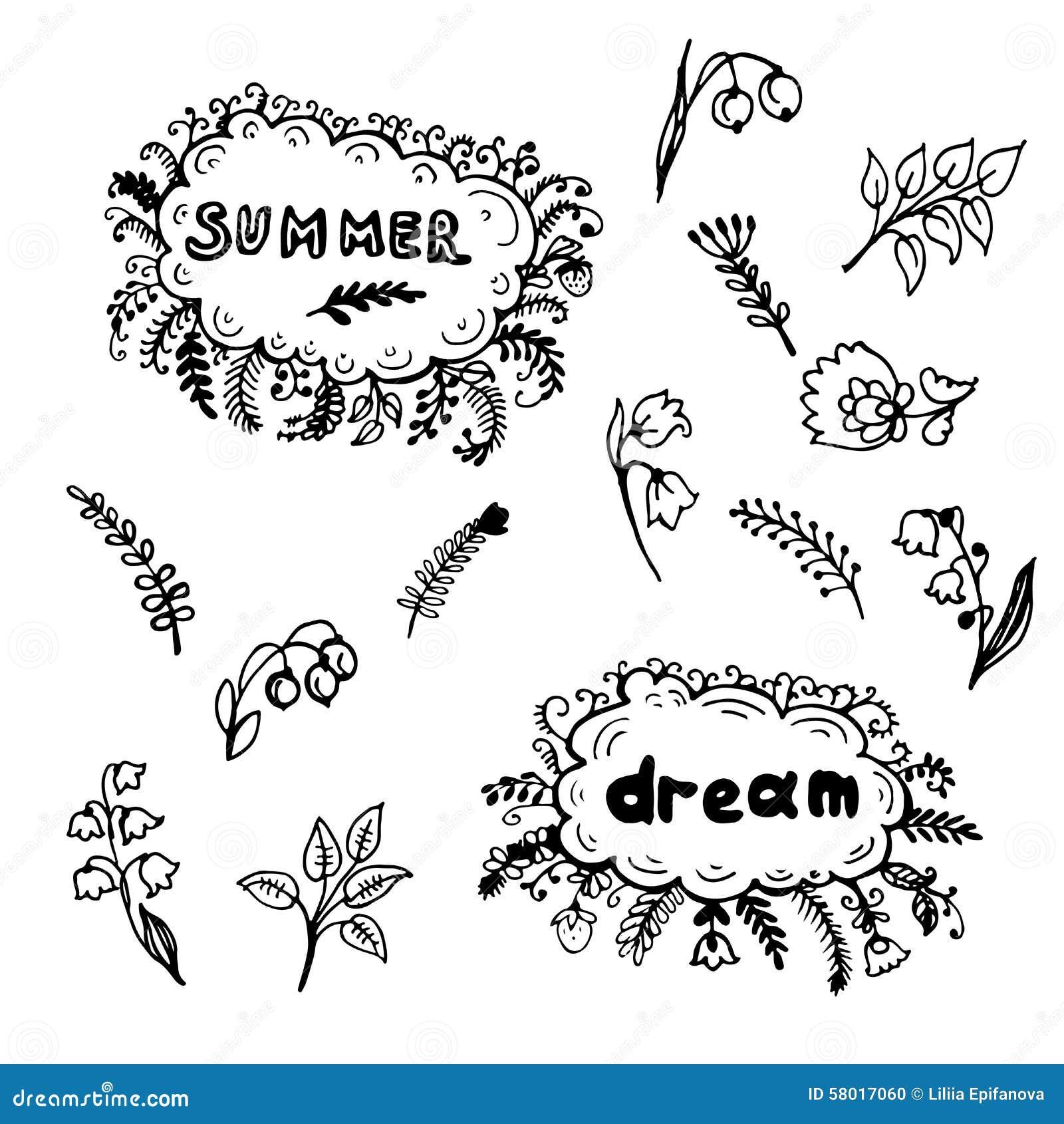 Illustrazione dipinta a mano della struttura dei fiori