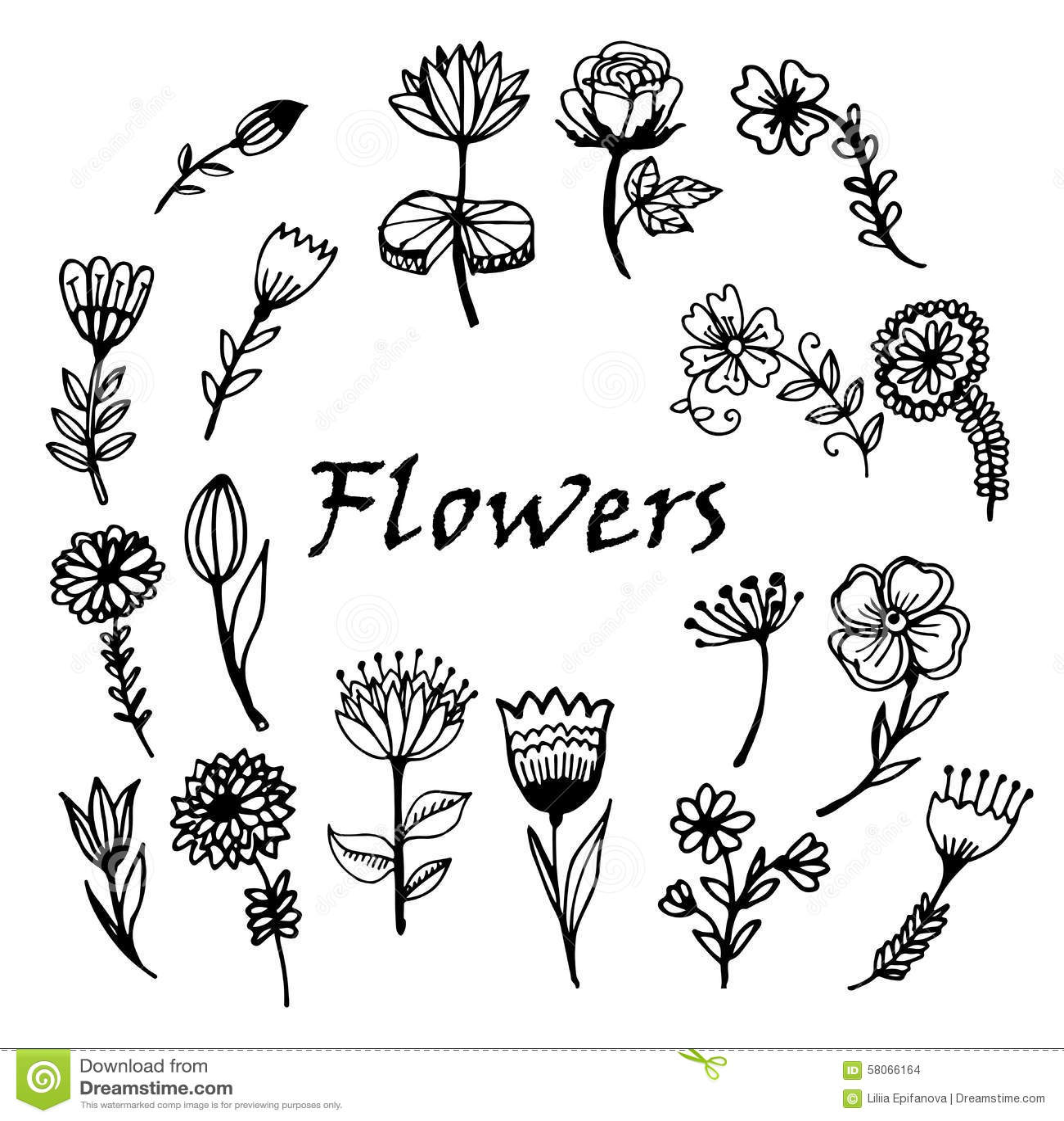 Illustrazione dipinta a mano di schizzo di scarabocchio dei fiori