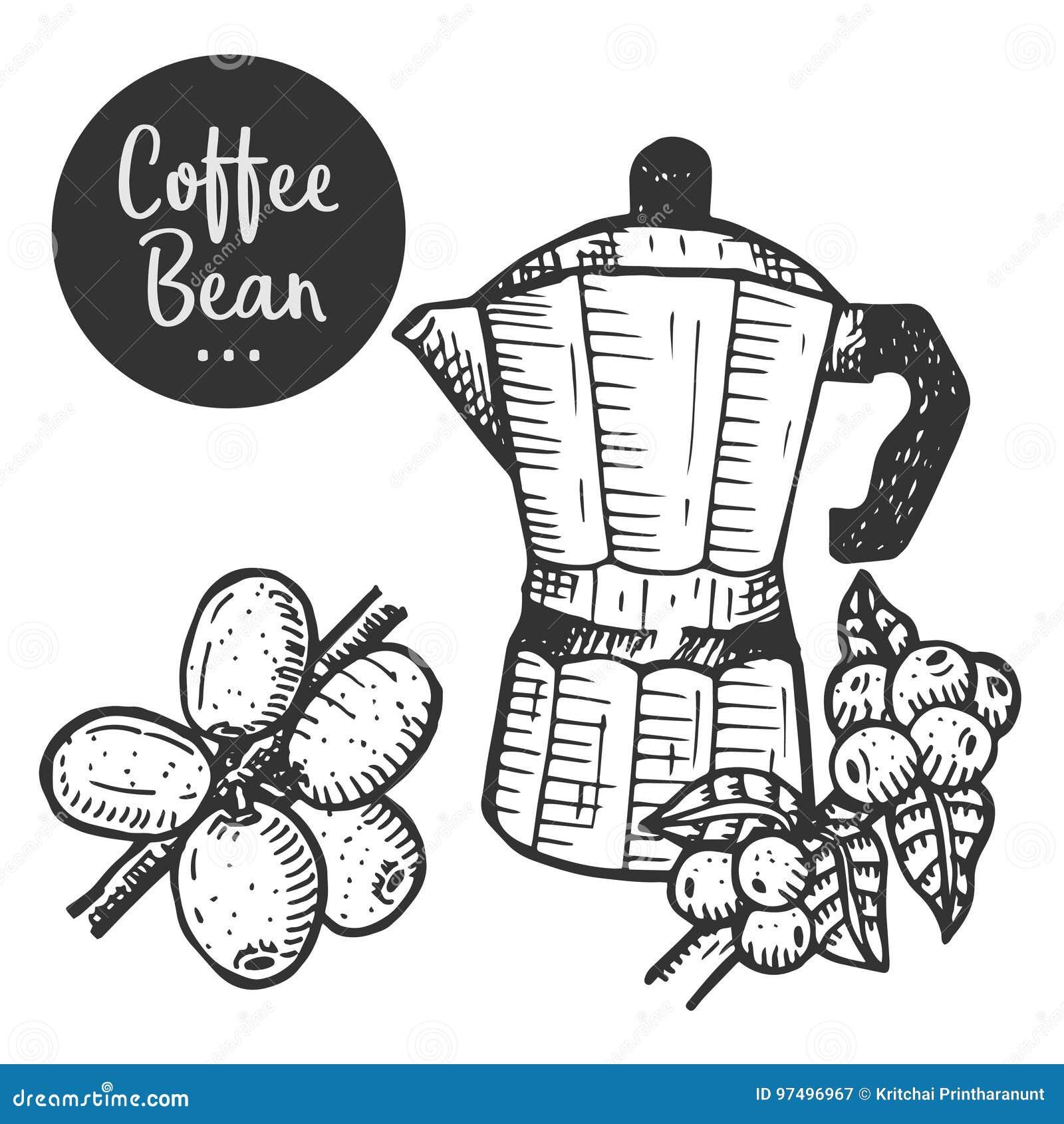Illustrazione disegnata a mano di caffè