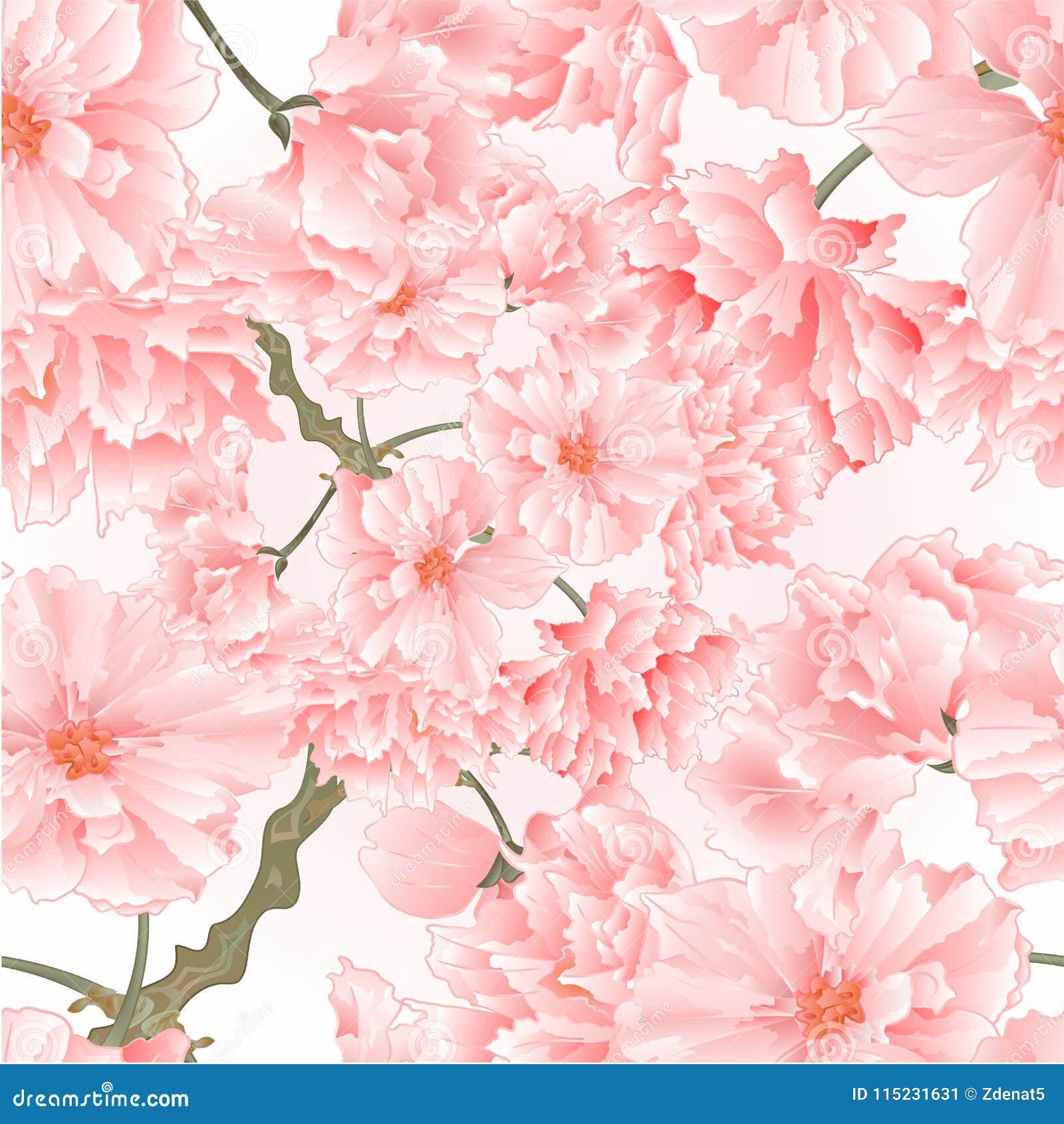 Illustrazione rosa naturale d annata di vettore del fondo di struttura del ramoscello dell albero dei fiori senza cuciture di sak