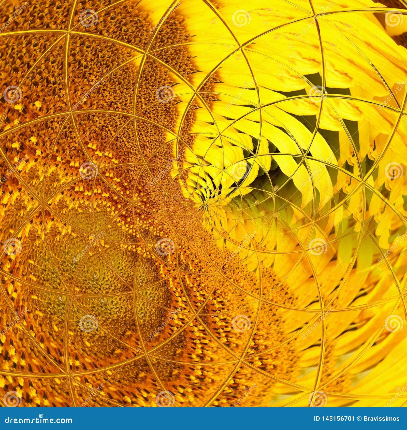 Illustrazione a spirale di simmetria di progettazione geometrica geometry