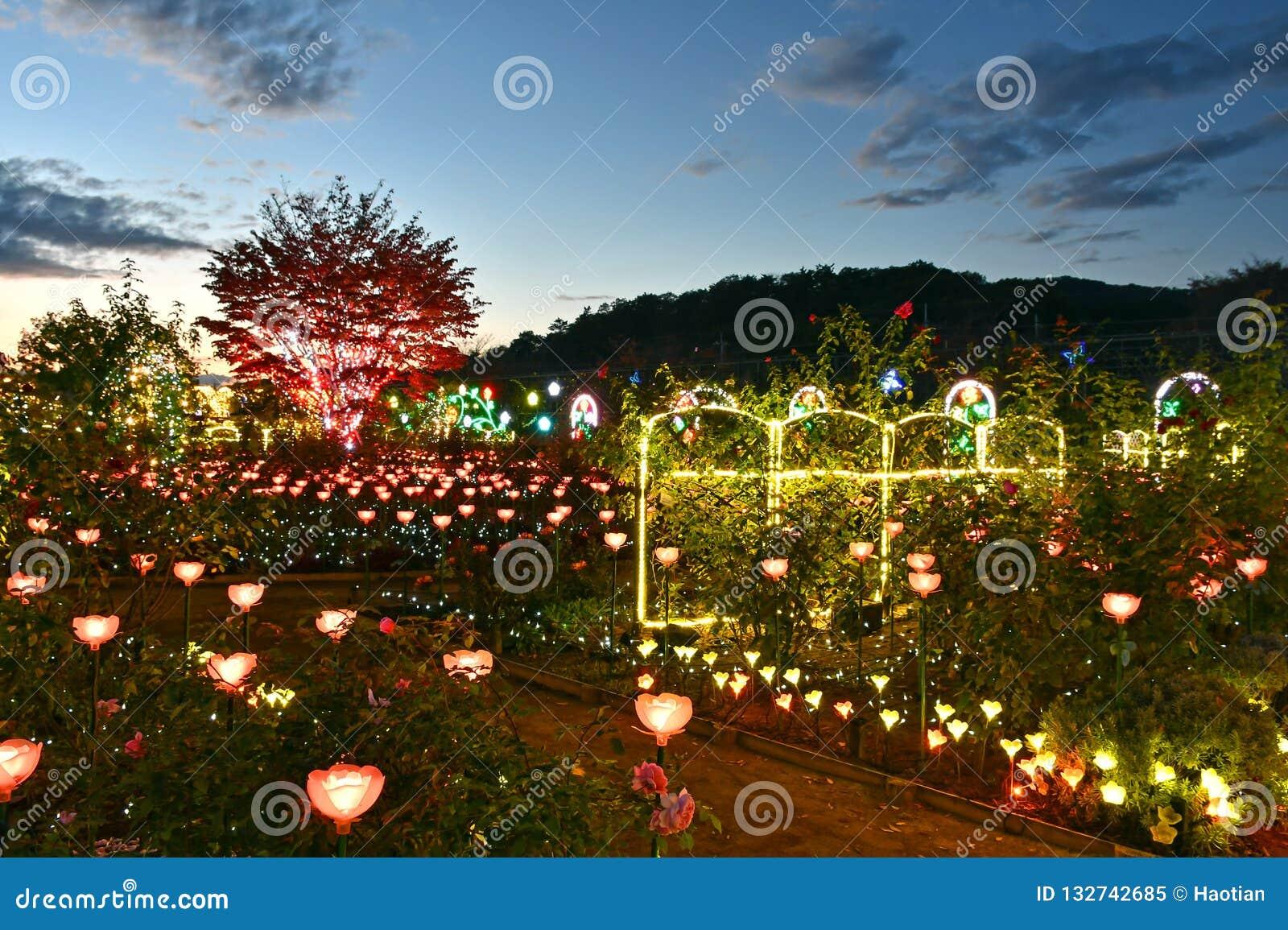 Iluminação 2018 do inverno do parque da flor de Ashikaga