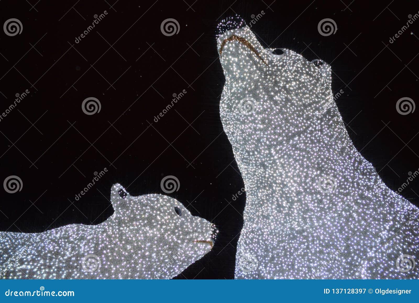 Iluminación de los osos polares