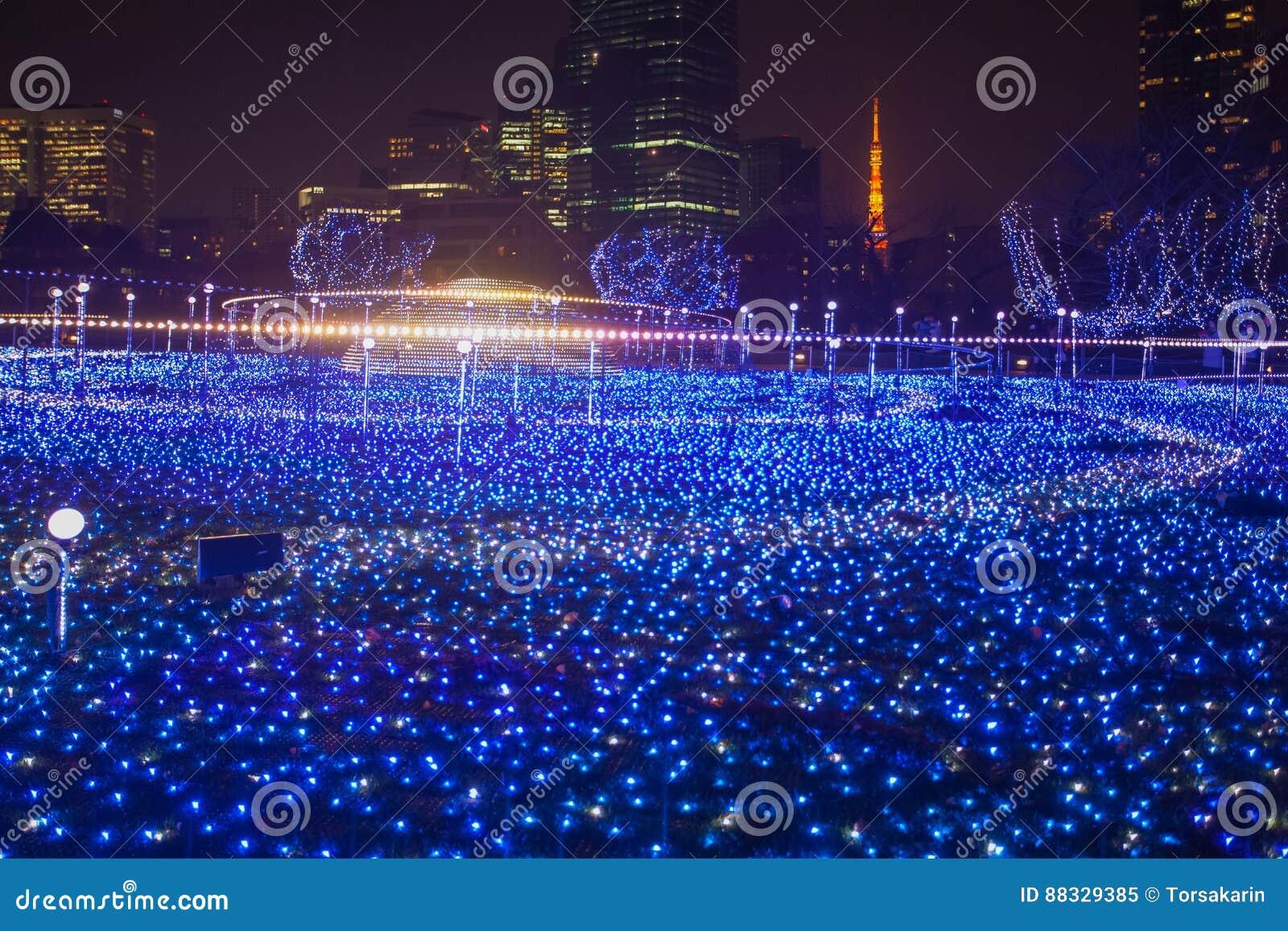 Iluminaciones de la estación de la Navidad y del invierno de Tokio
