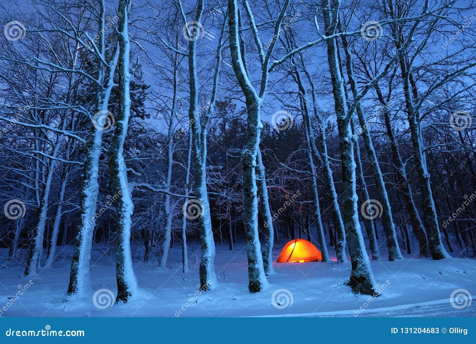 Iluminando a barraca em madeiras nevados do parque de Nebrodi, Sicília