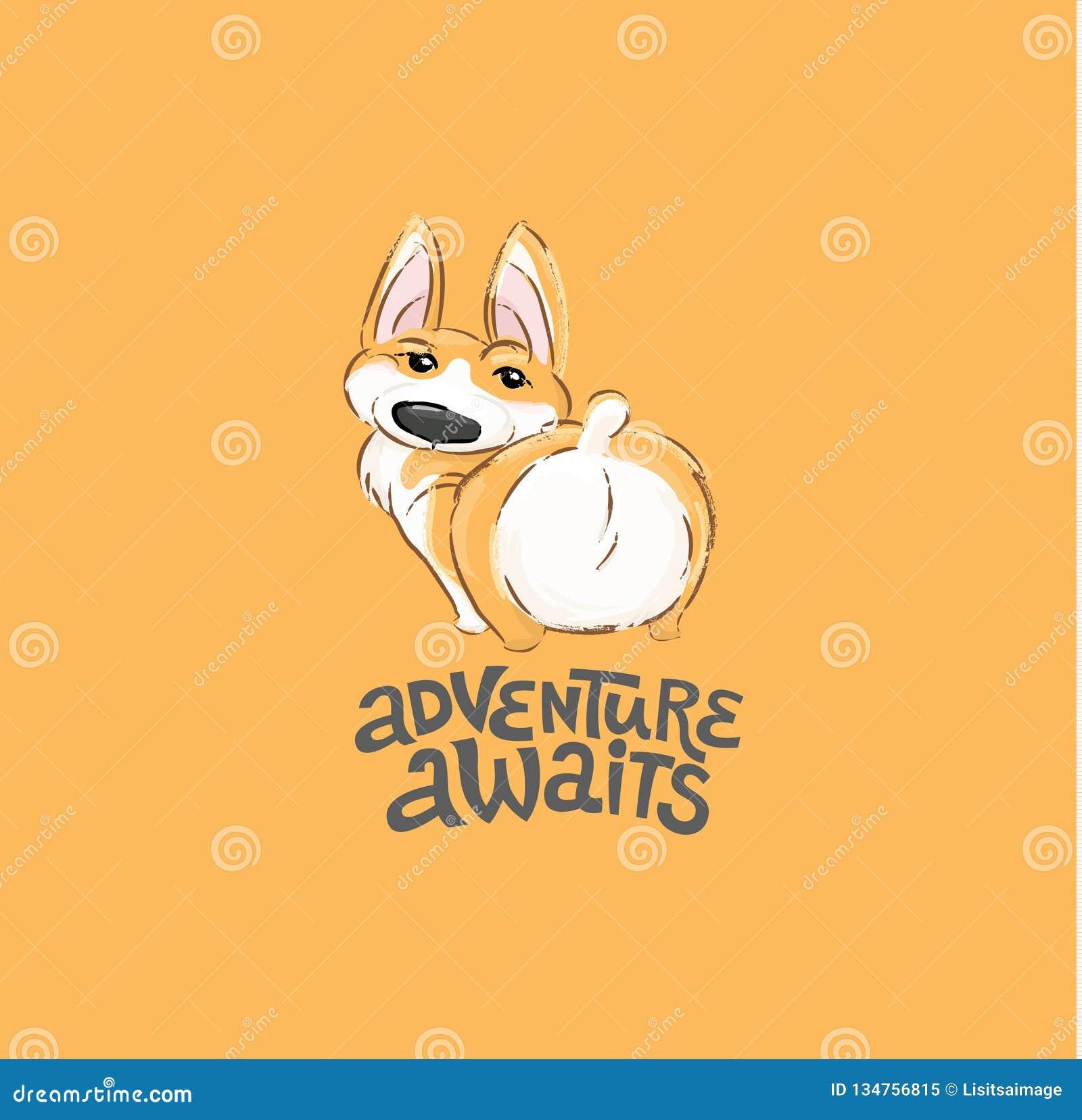 Ilustração bonito do vetor da extremidade do caráter do cão do Corgi Opinião traseira animal do cachorrinho pequeno engraçado par