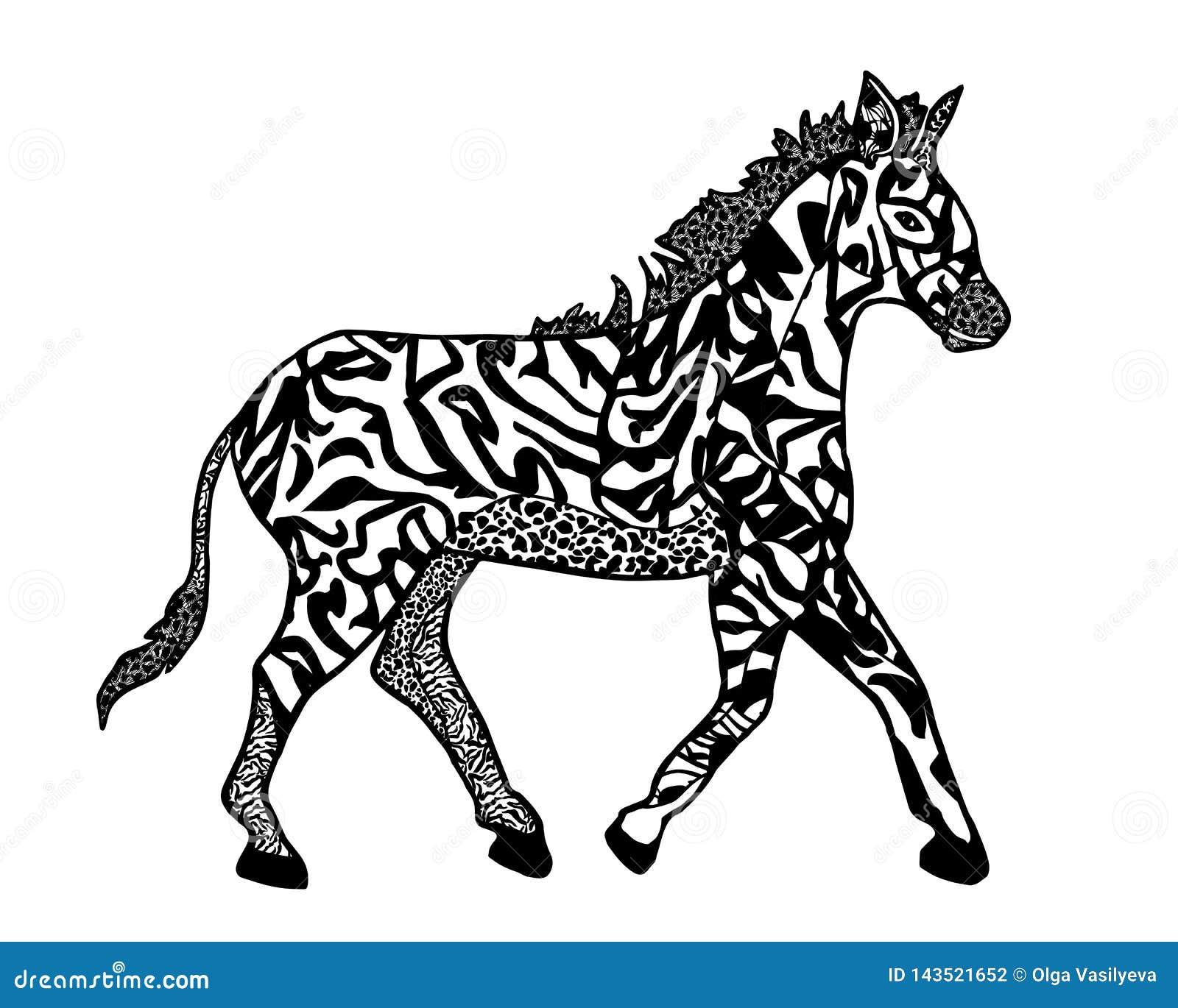 Ilustração da zebra no zenart do estilo para isolar-se no branco para o livro para colorir