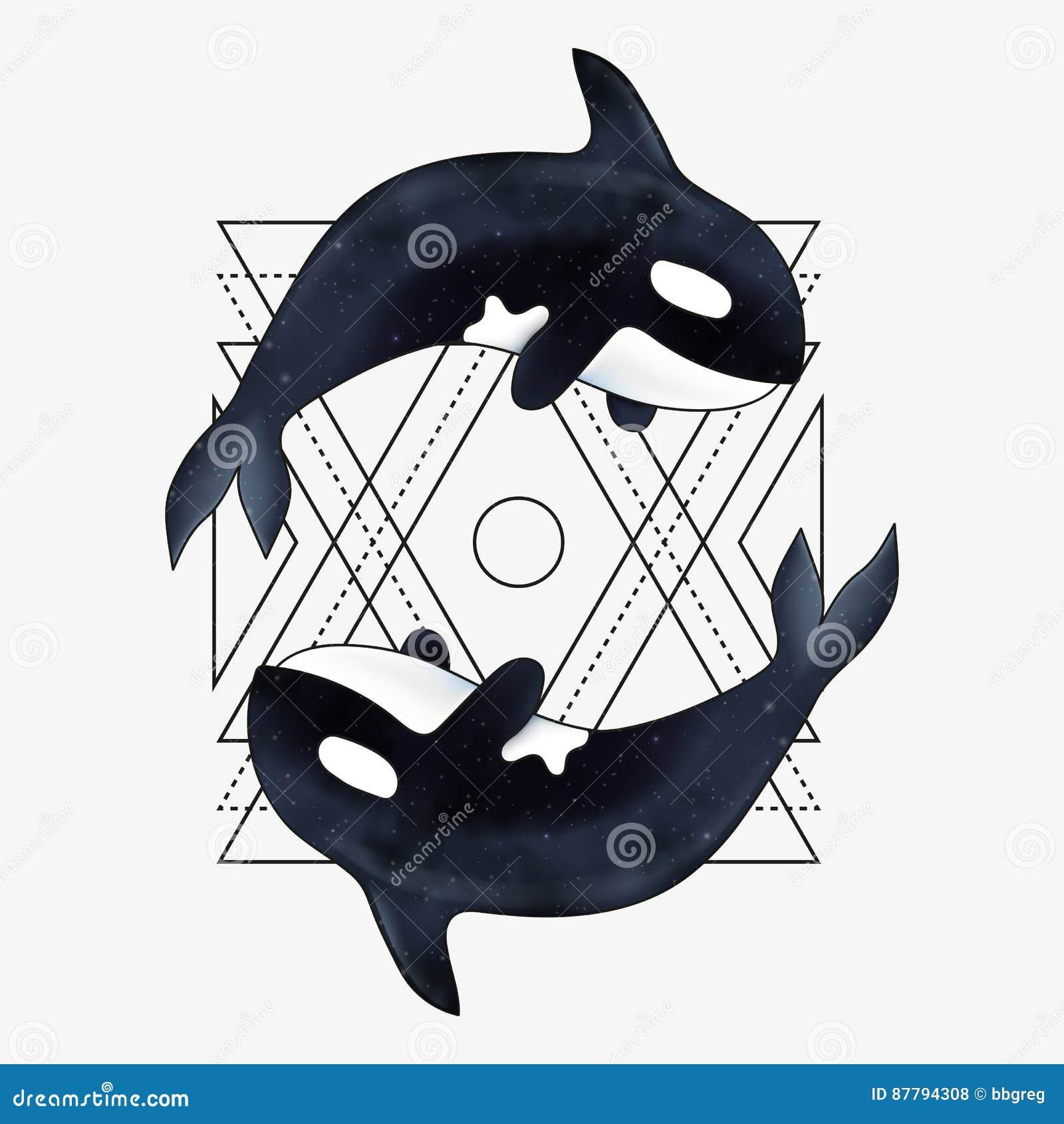Ilustração do vetor da orca Mamífero marinho Baleia de assassino com elemento geométrico abstrato