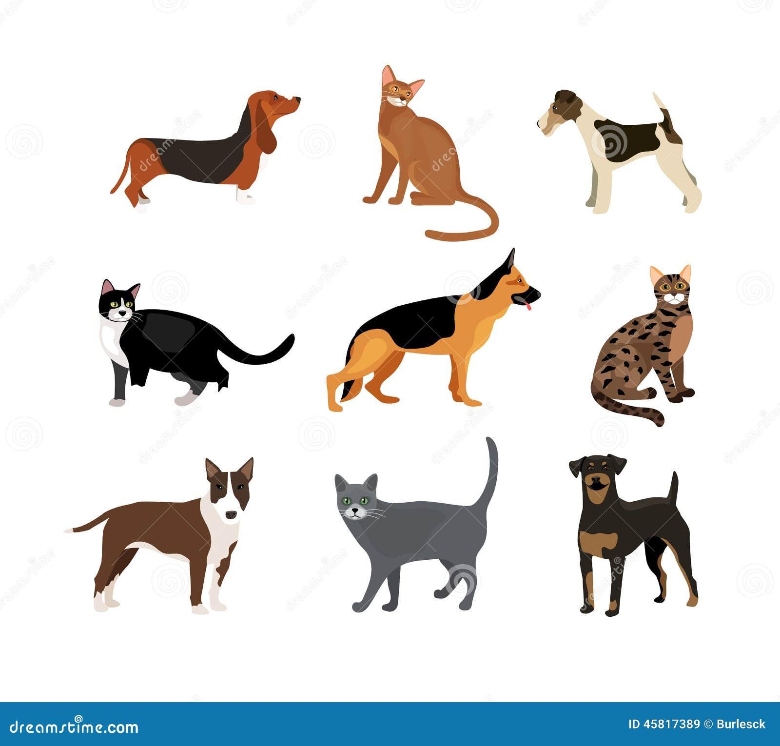 Ilustração do vetor dos gatos e dos cães