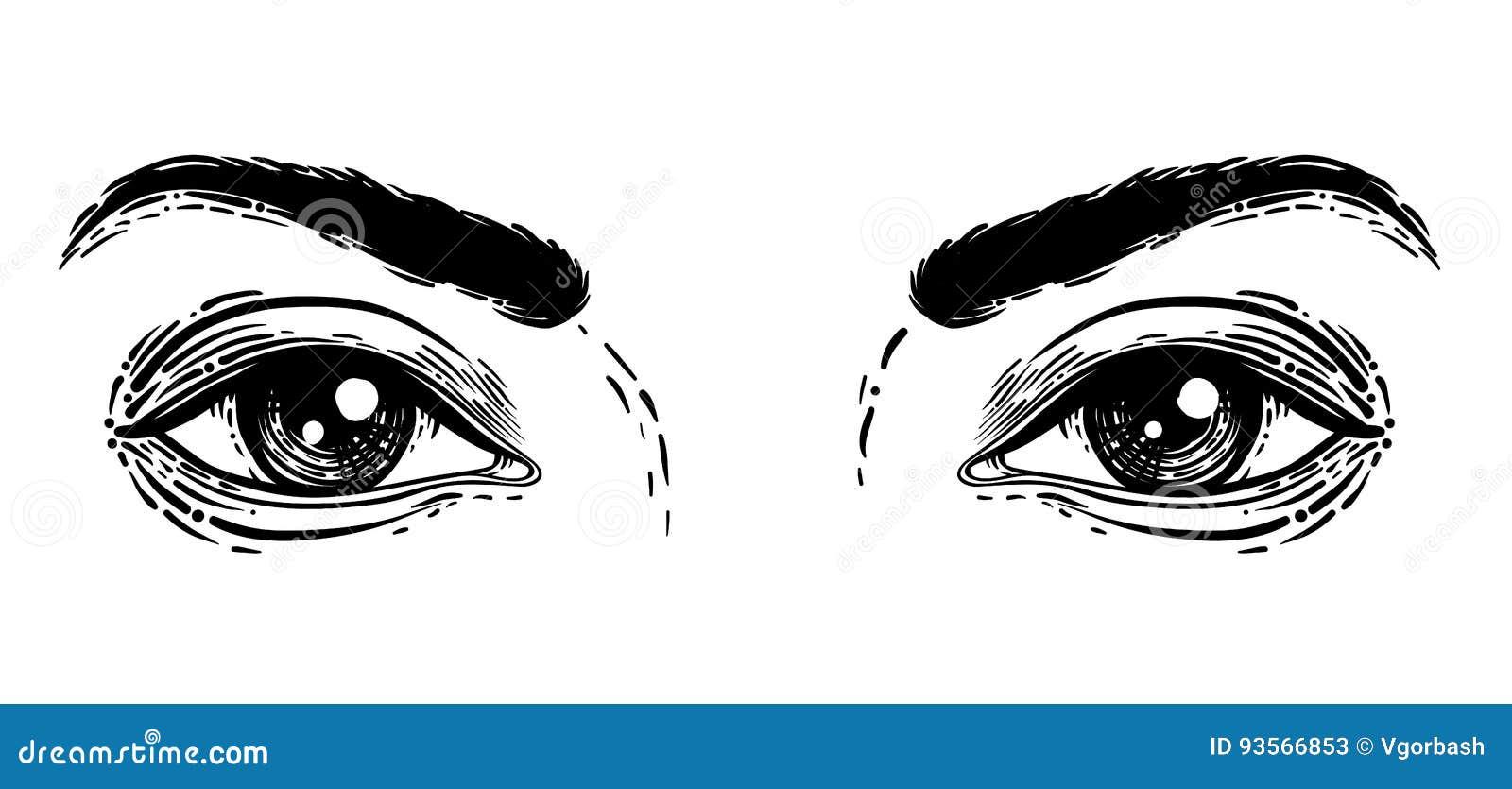 Ilustracao Do Vetor Dos Olhos Humanos No Gravado Desenho Da Mao Em